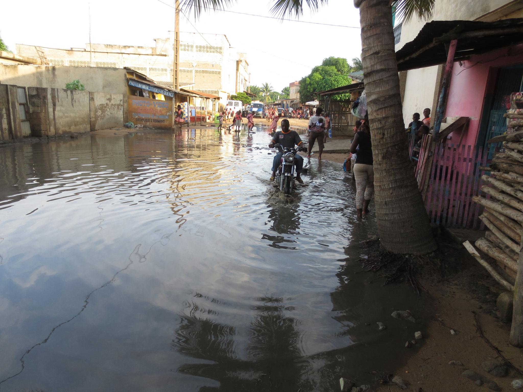 Zemidas haben insbesondere während der Regenzeit Probleme.