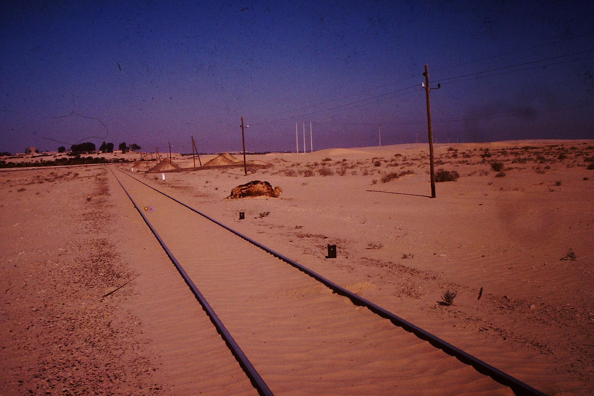 Irgenwie sieht dies befremdend aus. Es gibt aber tatsächlich eine Eisenbahnlinie in die Wüste.
