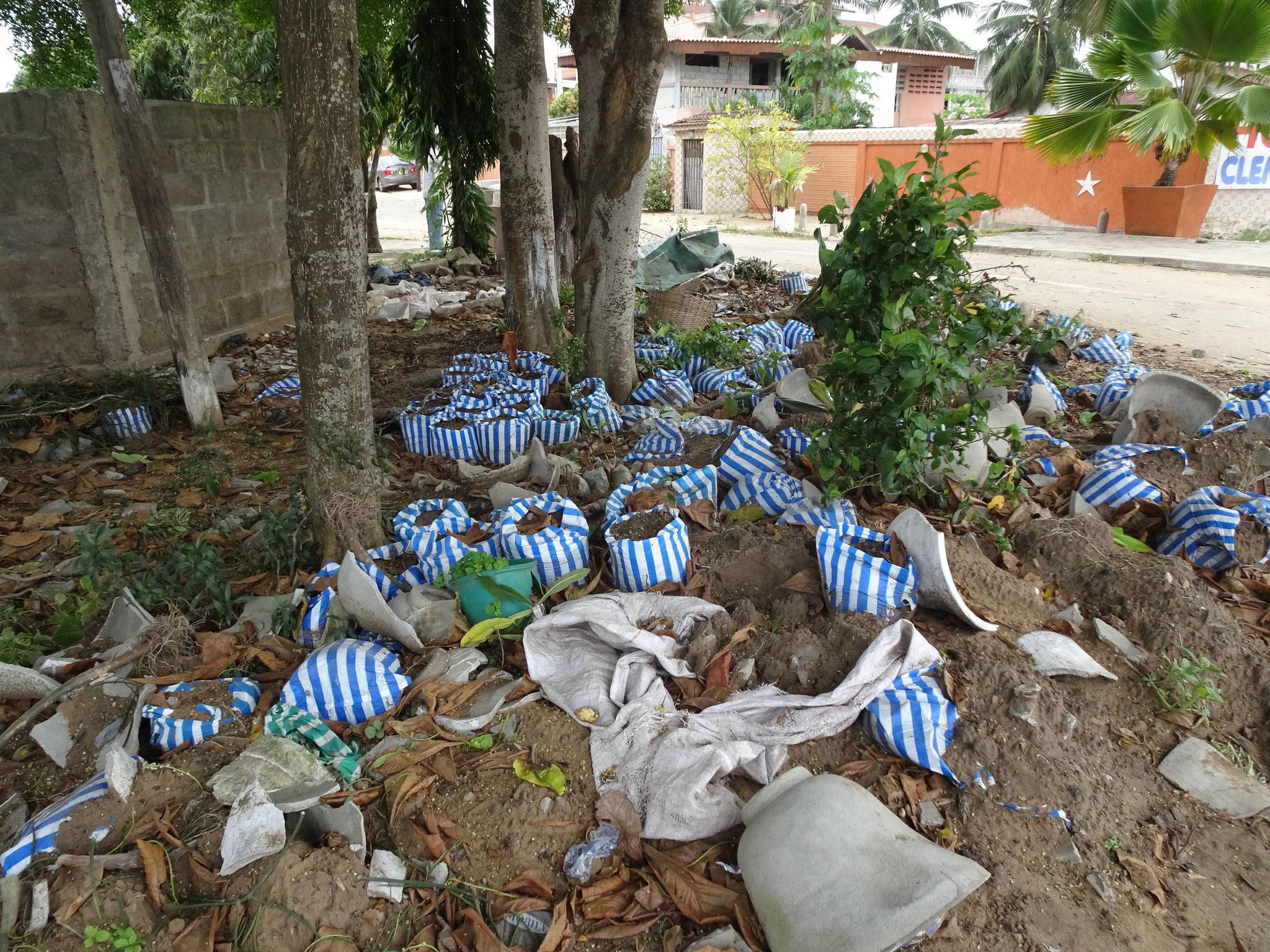 Plastiksäcke und Tonscherben bleiben liegen