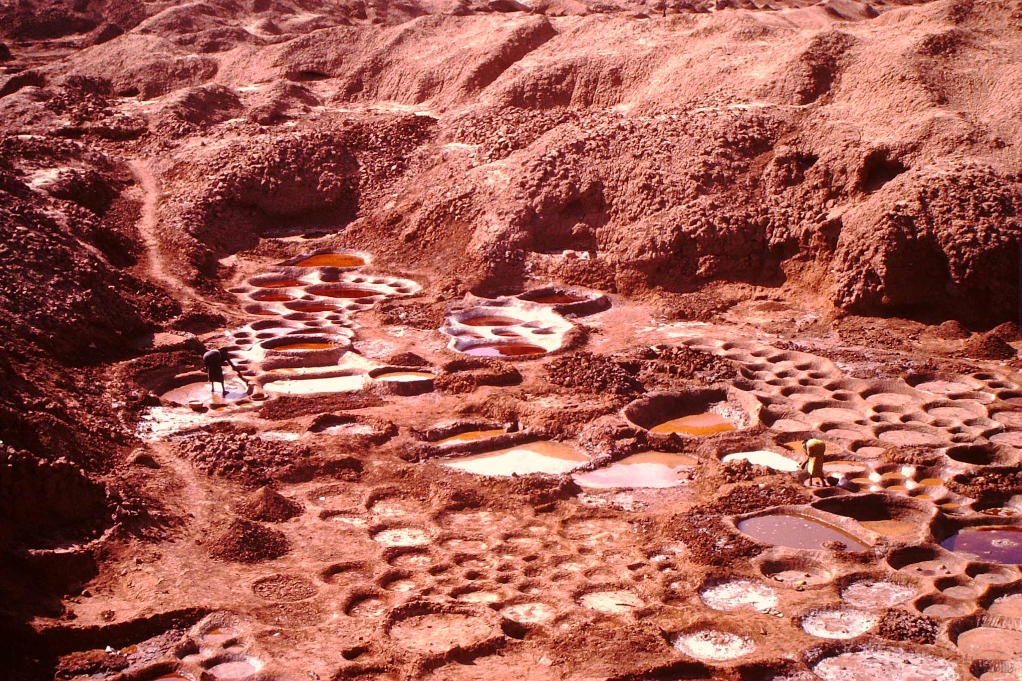 Die Salzminen vonTeguidam Tessum.