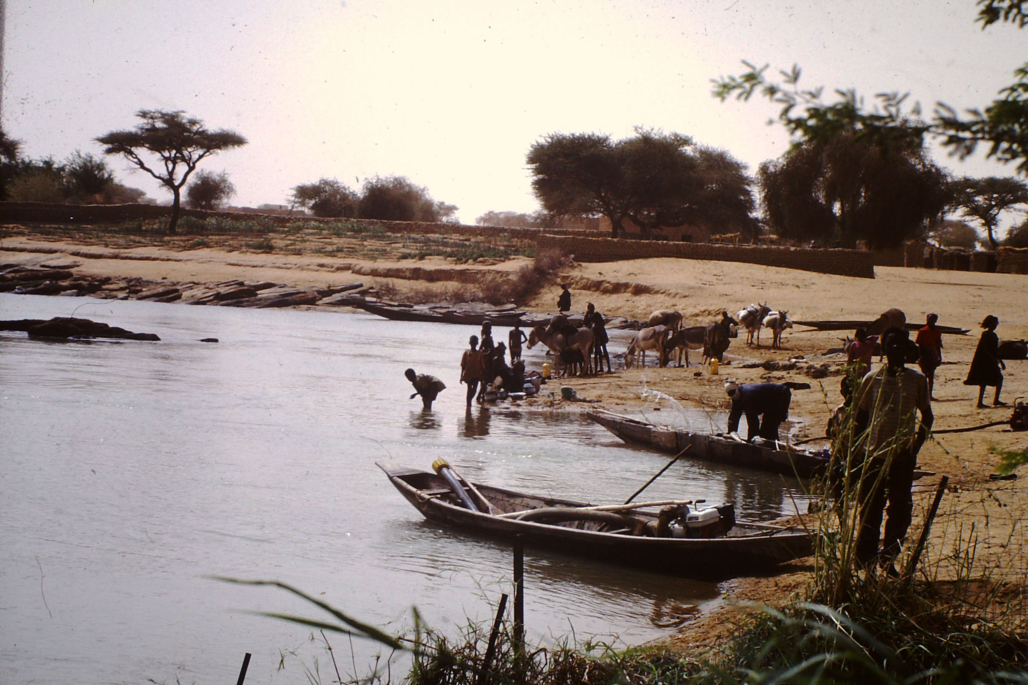 30. Fischer am Fluss Senegal. (2001)