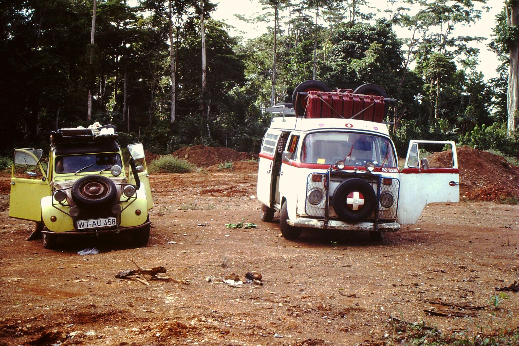 Unsere Fahrzeuge in einer Waldlichtung.