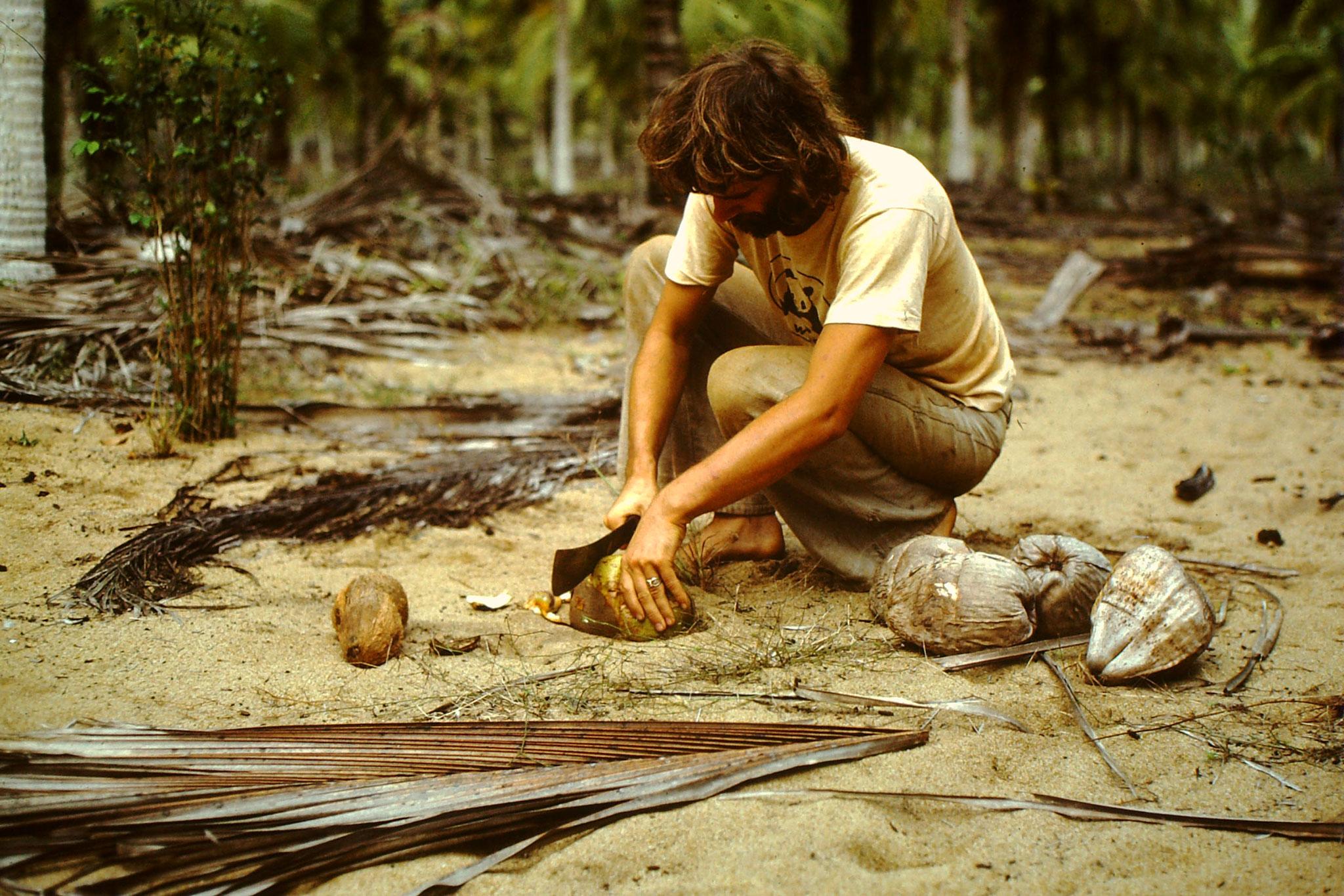 Wenn wir schon unter Kokospalmen übernachtet, sollte man auch Kokosnüsse essen. Nur sollte man nicht solche alten, ausgetrockneten Kokosnüsse öffnen. Man lernt nie aus.