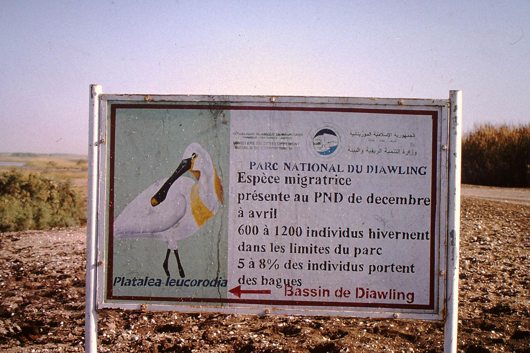 Das Schild besagt, das 5 bis 8% der Vögel beringt sind.
