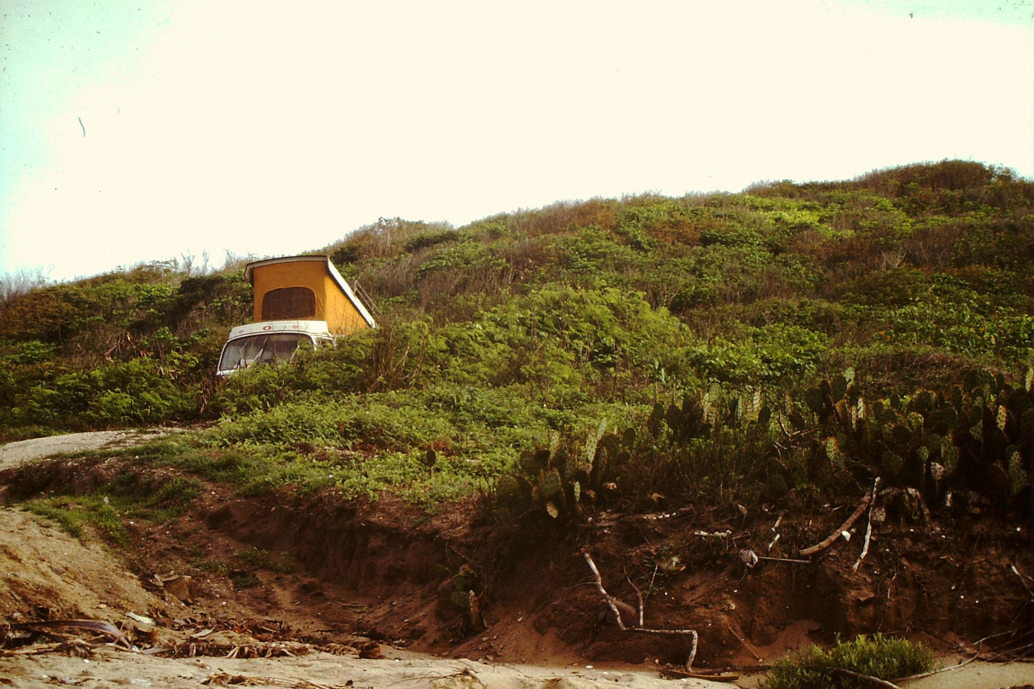 Camping zwischen Kakteen in Saltpond in der nähe von Dixcove.