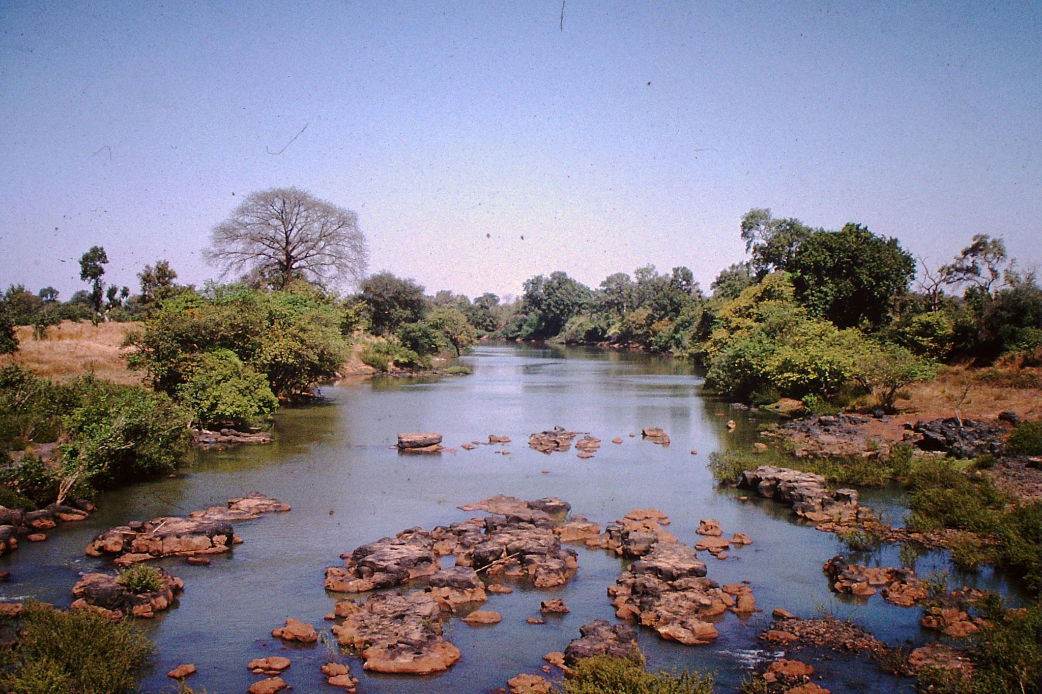 36. Der Fluss Senegal kurz vor Kayes.