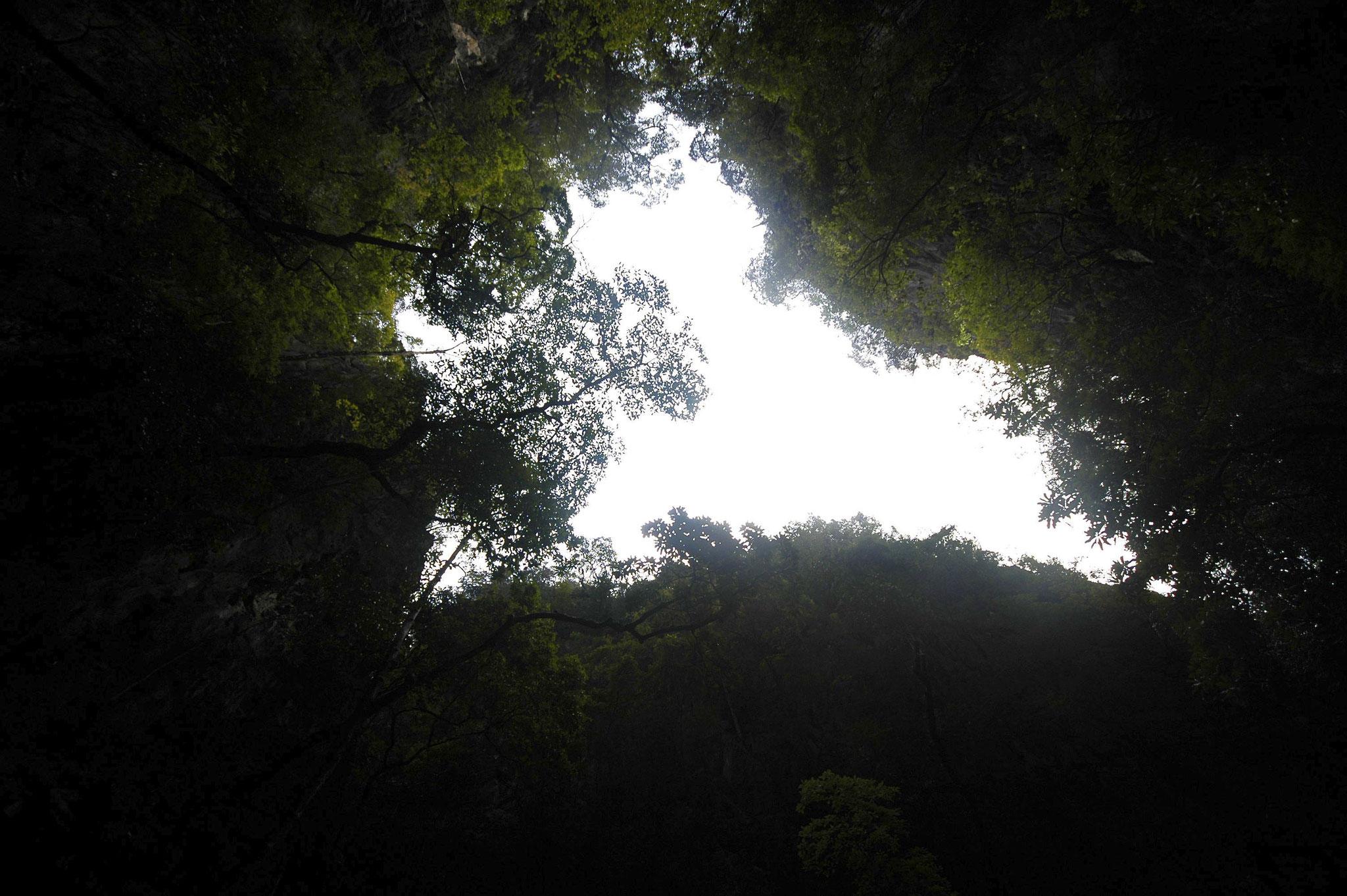 Мы заплываем в неведомые и тёмные полупещеры, из которых едва видно небо...