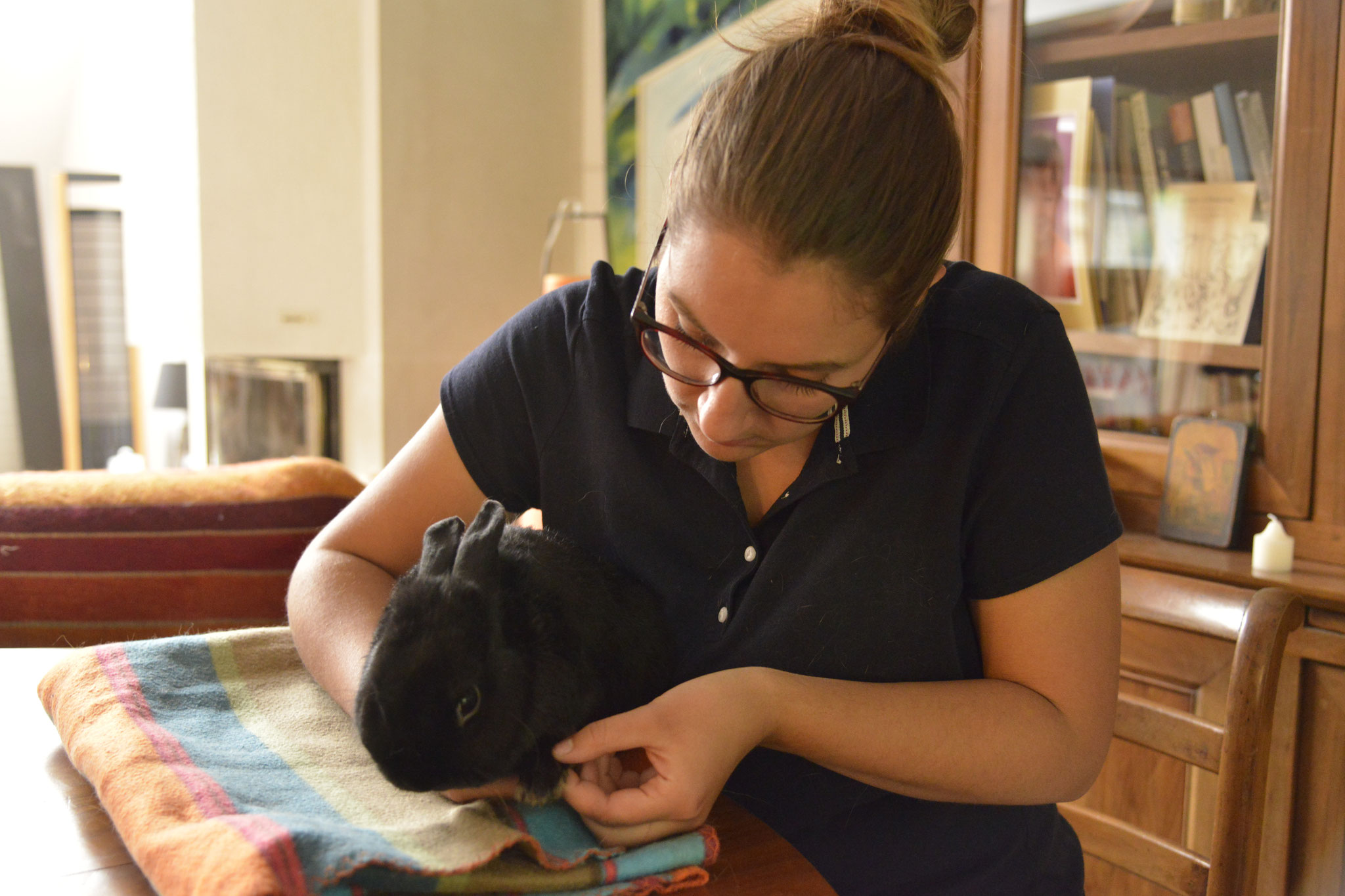 Testing des phalanges chez le lapin