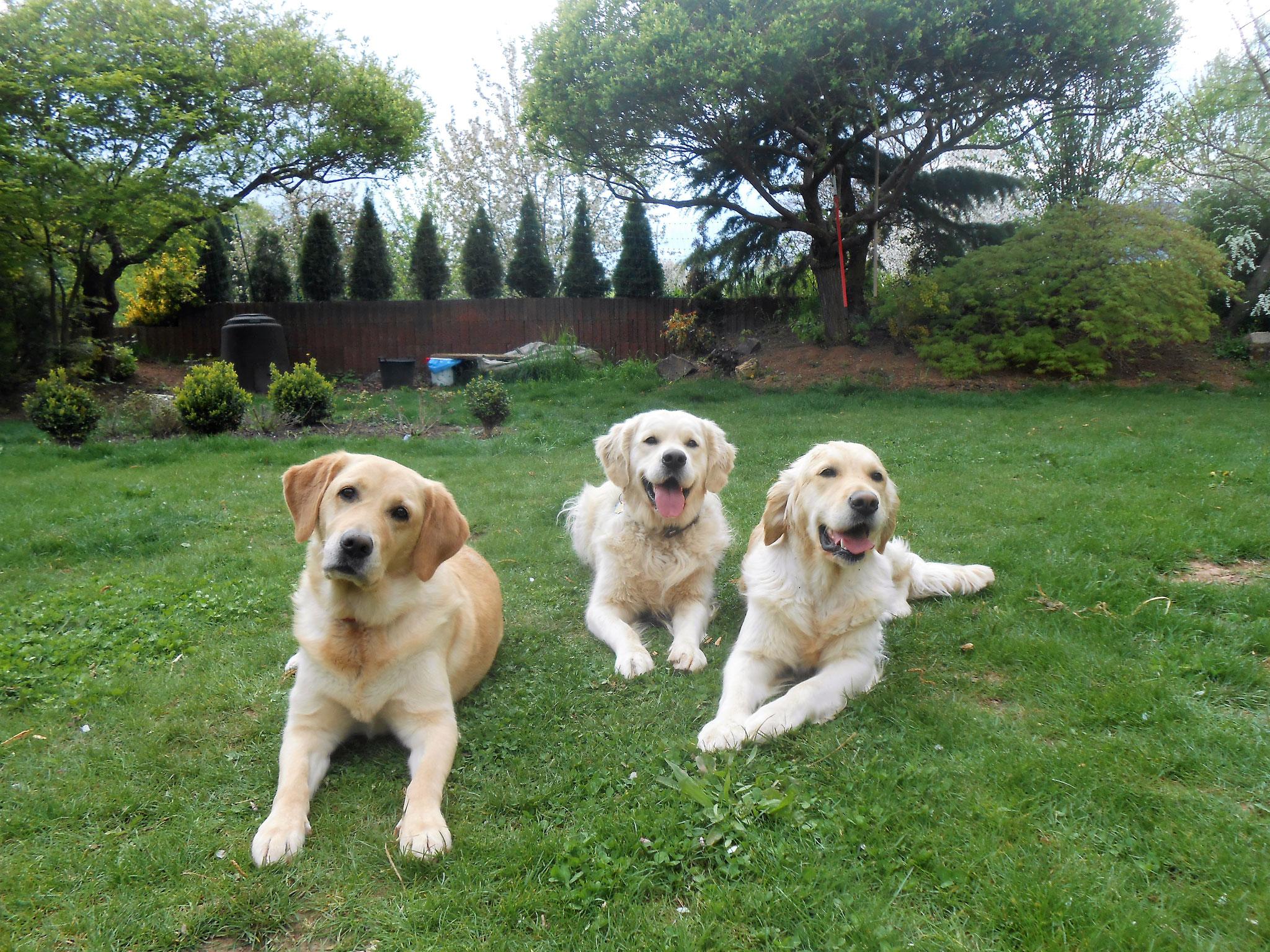 Juna, Henry und Annabell