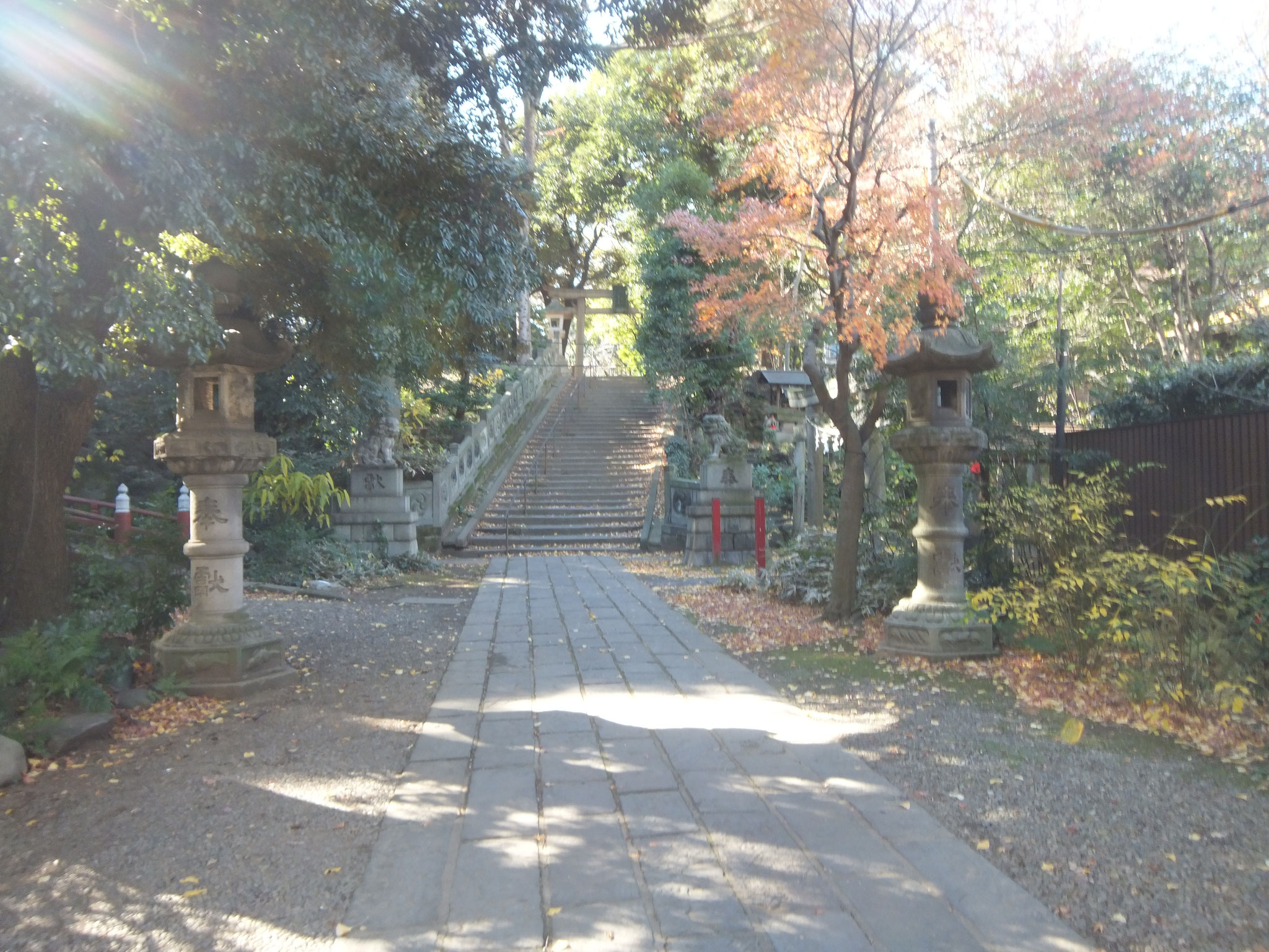 ②赤坂氷川神社