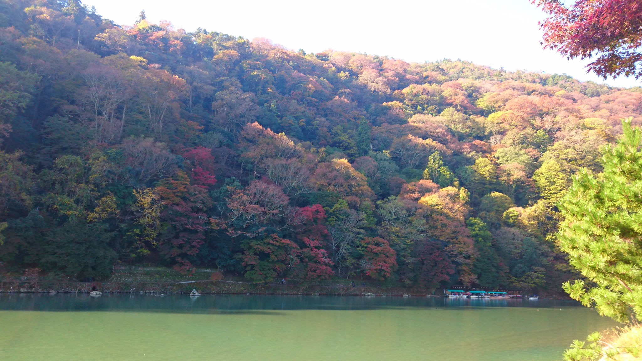 嵐山と保津川