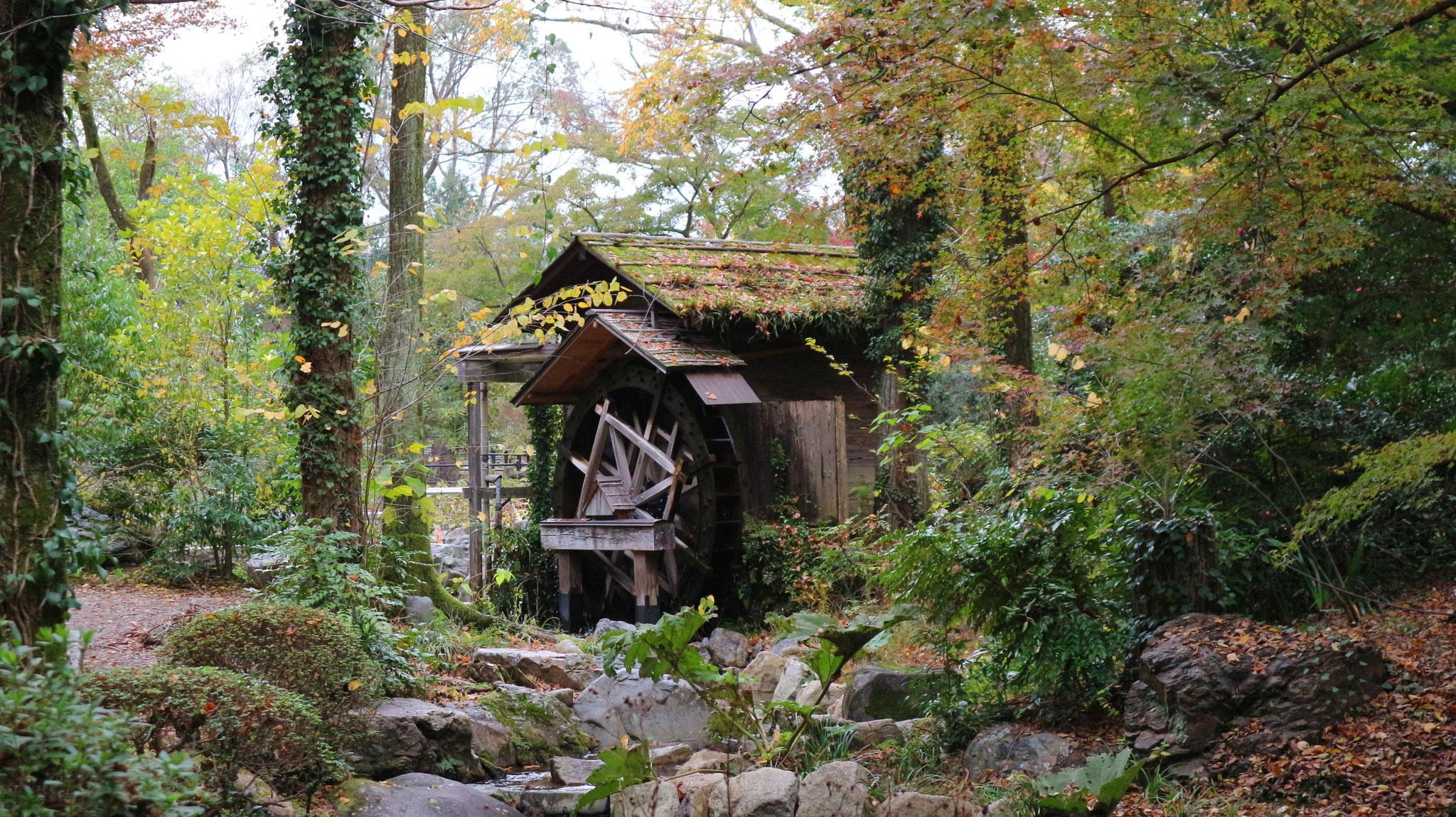 なからぎの森の水車