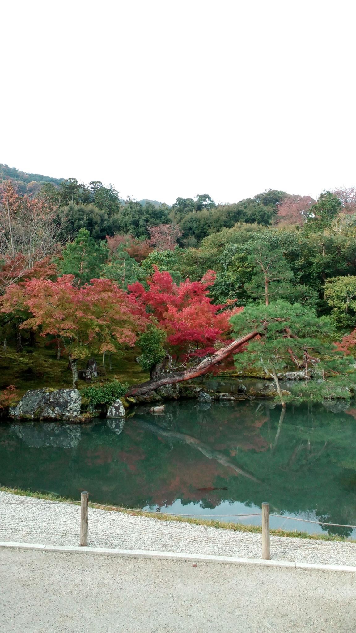 「曹源池」庭園