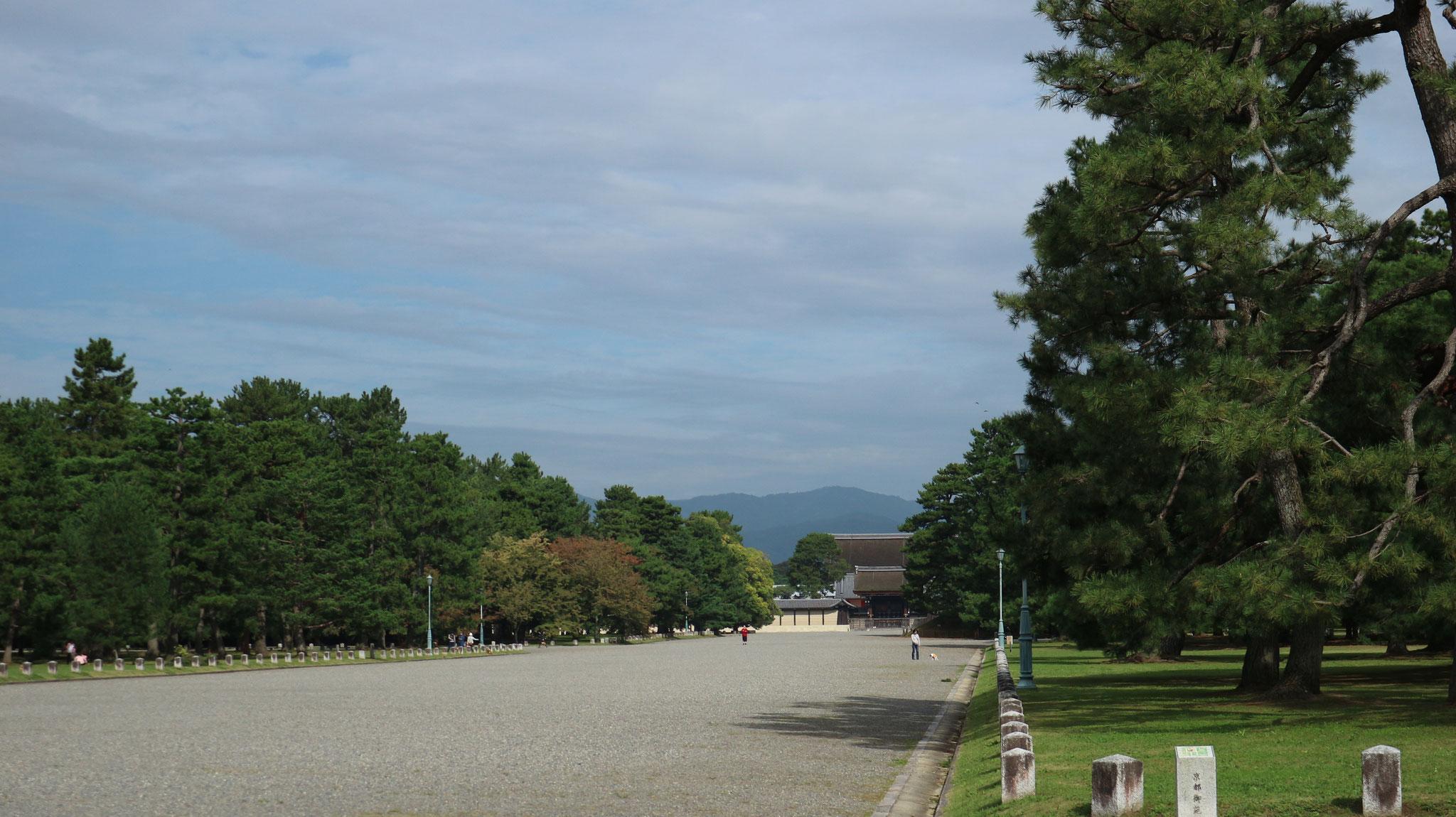 久しぶりの晴れ間の京都御苑
