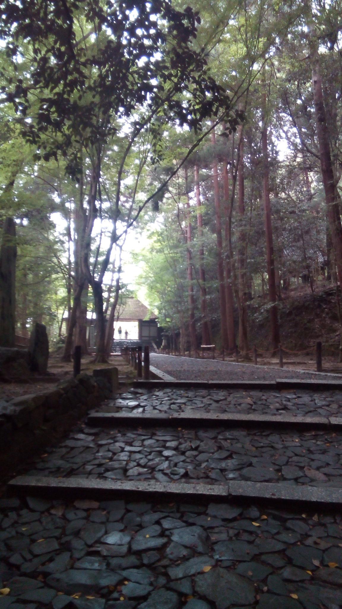 お寺に続く山道