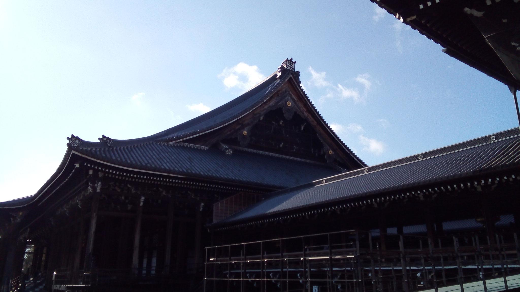 親鸞聖人像が安置されている御影堂(ごえいどう)(国宝)