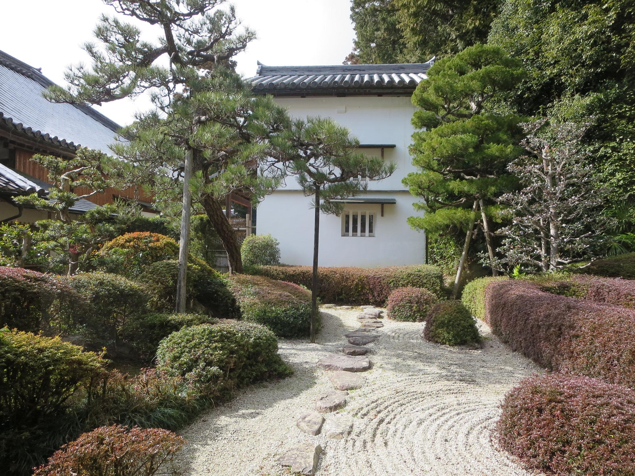 蓬莱の庭 鶴島(中央の松の木)