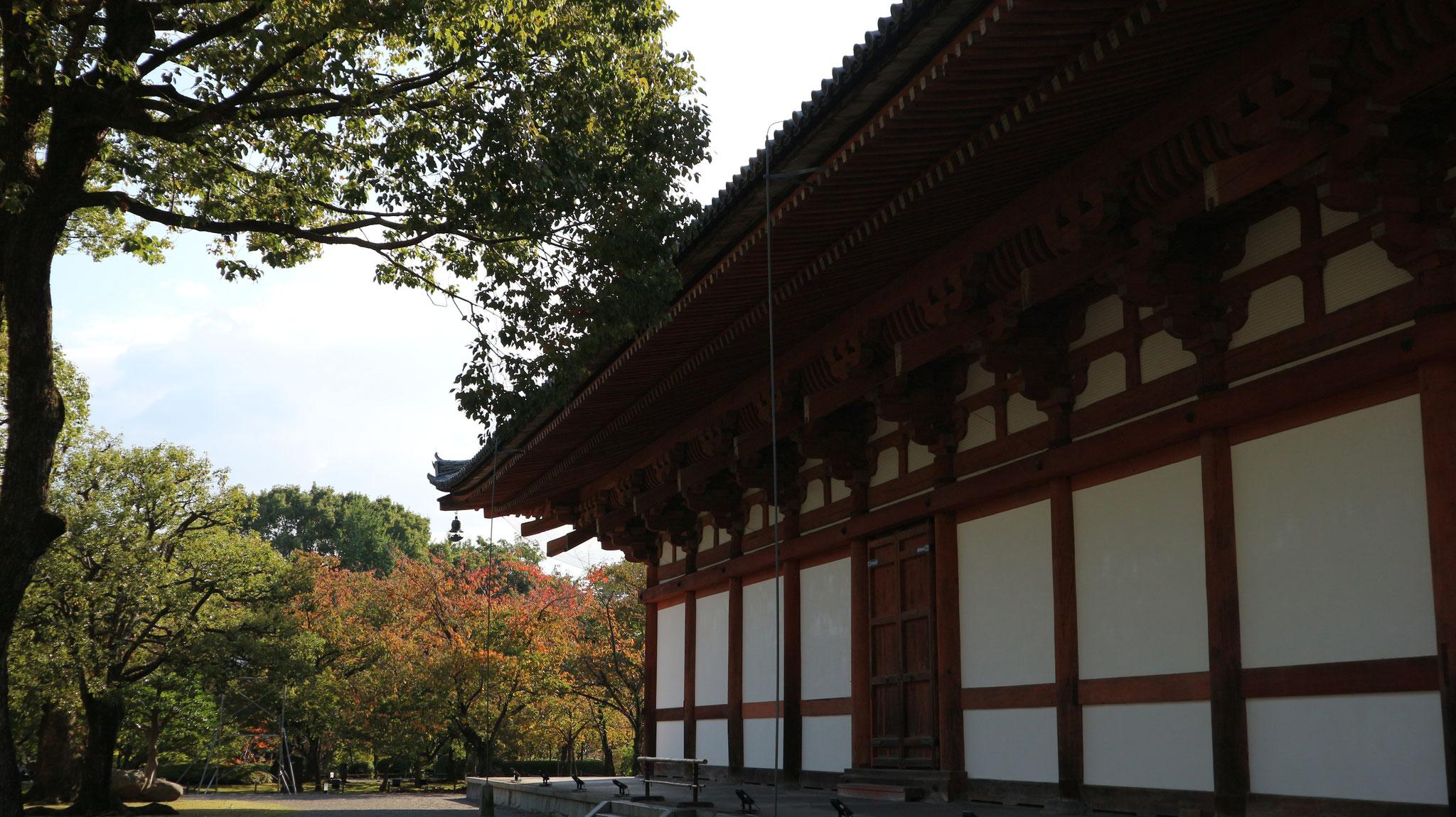 立体曼荼羅の講堂