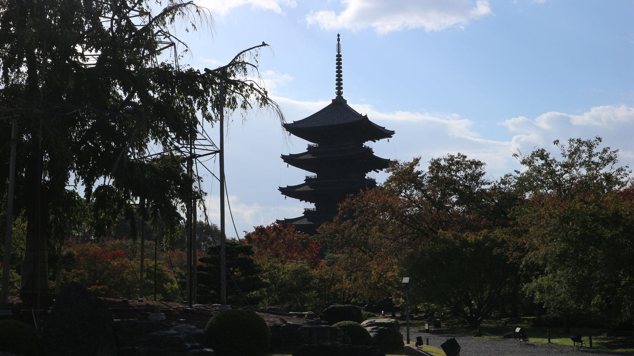 高さ約55mの五重の塔
