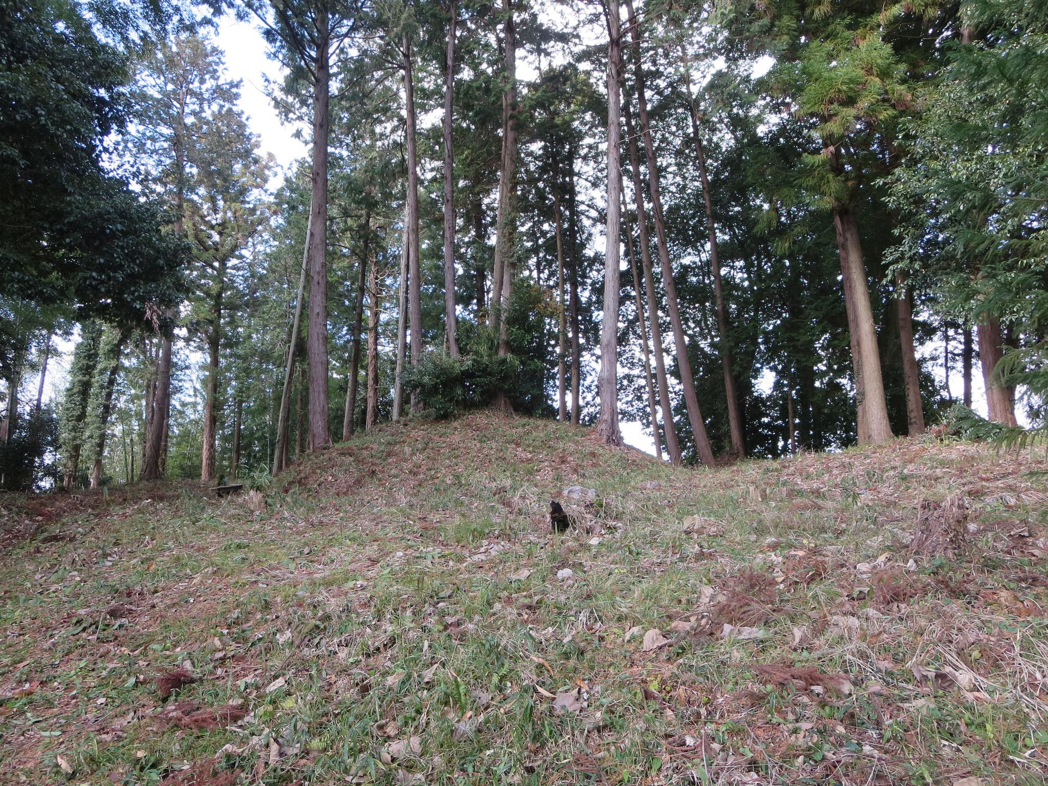大原神社近くの藤原鎌足の母、大伴夫人(おおともぶにん)の墓