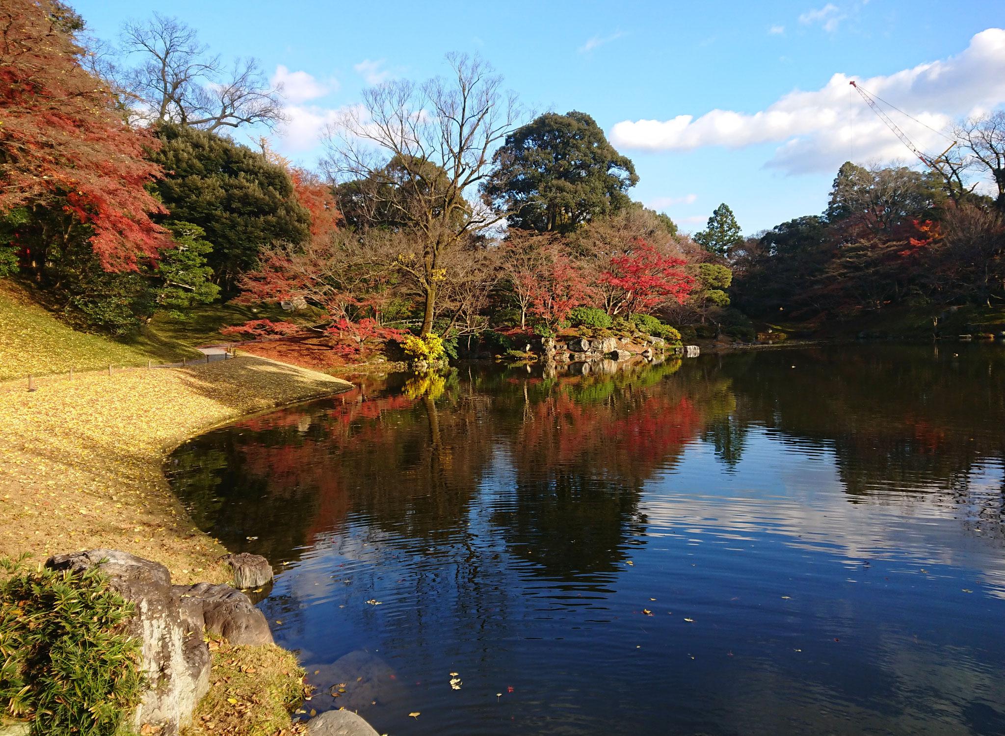 仙洞御所 小堀遠州作庭池泉回遊式庭園