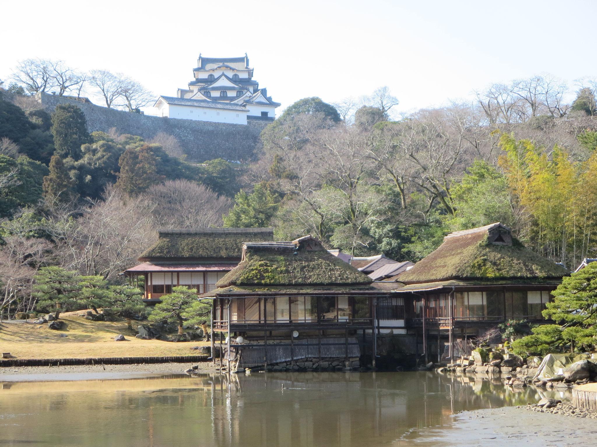 彦根城借景の庭