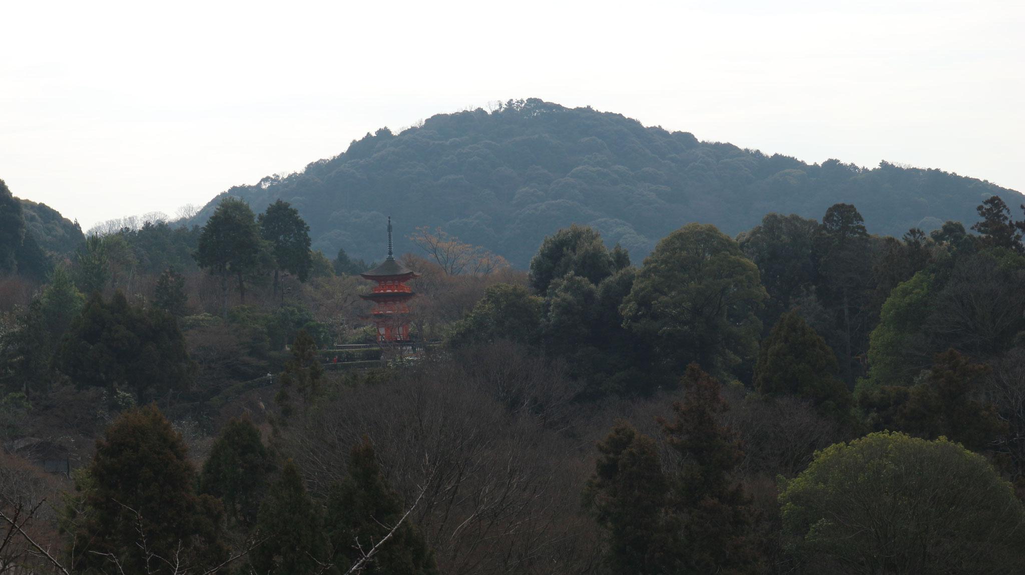 本堂から子安塔 清水寺塔頭(たっちゅう)泰産寺(たいざんじ) の三重塔