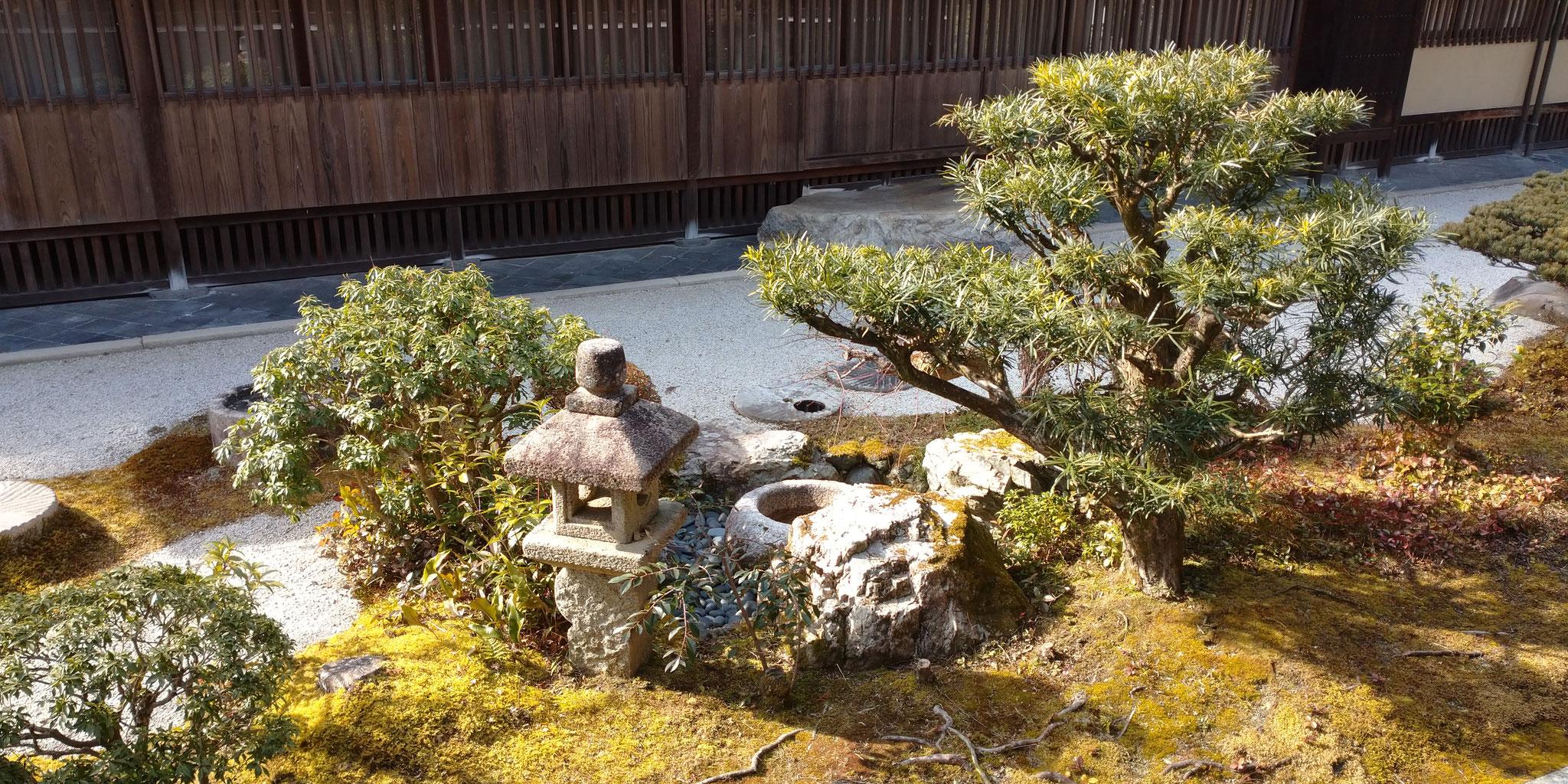 本堂裏のお庭