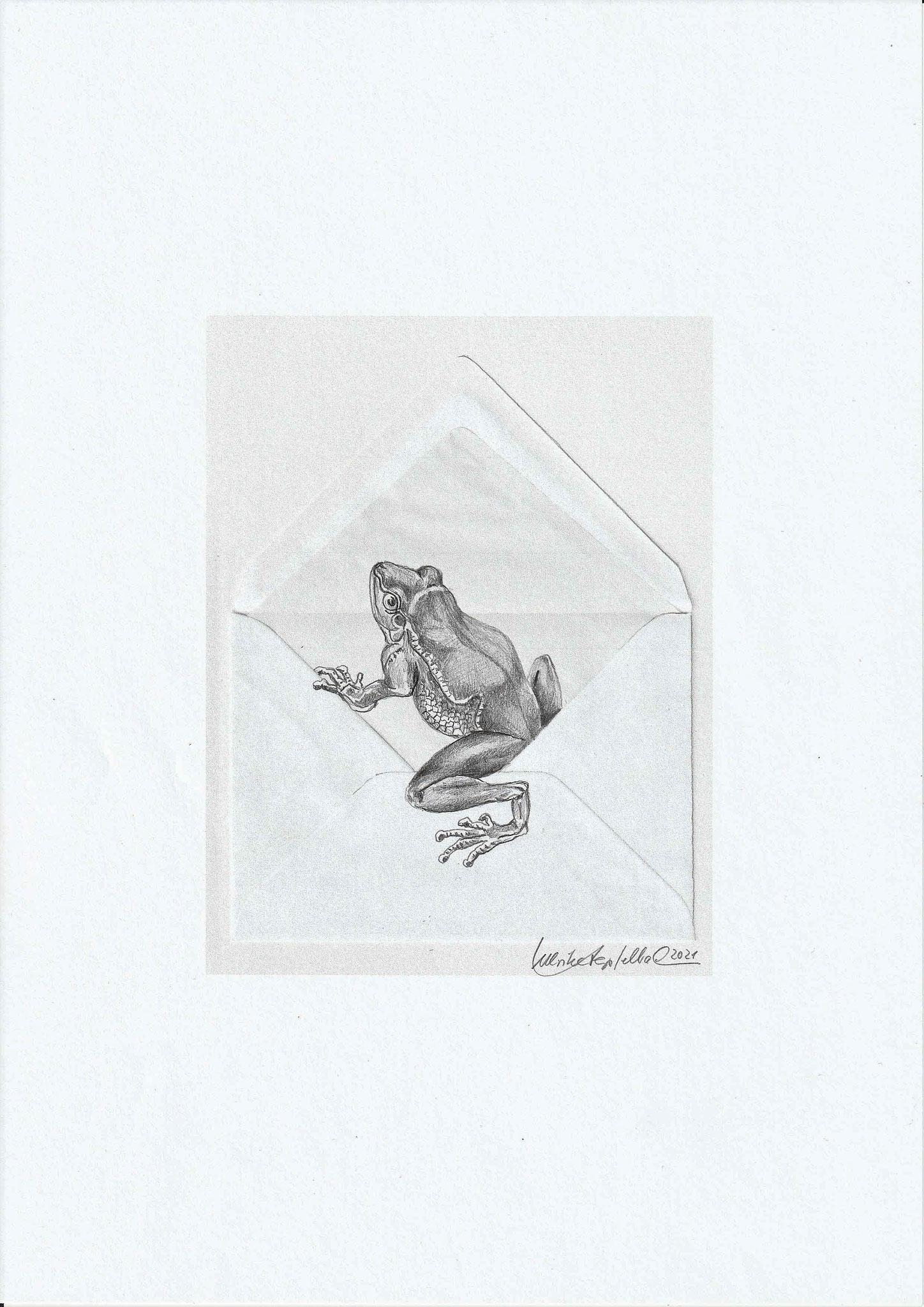 Froschpost / Collage und Bleistiftzeichnung