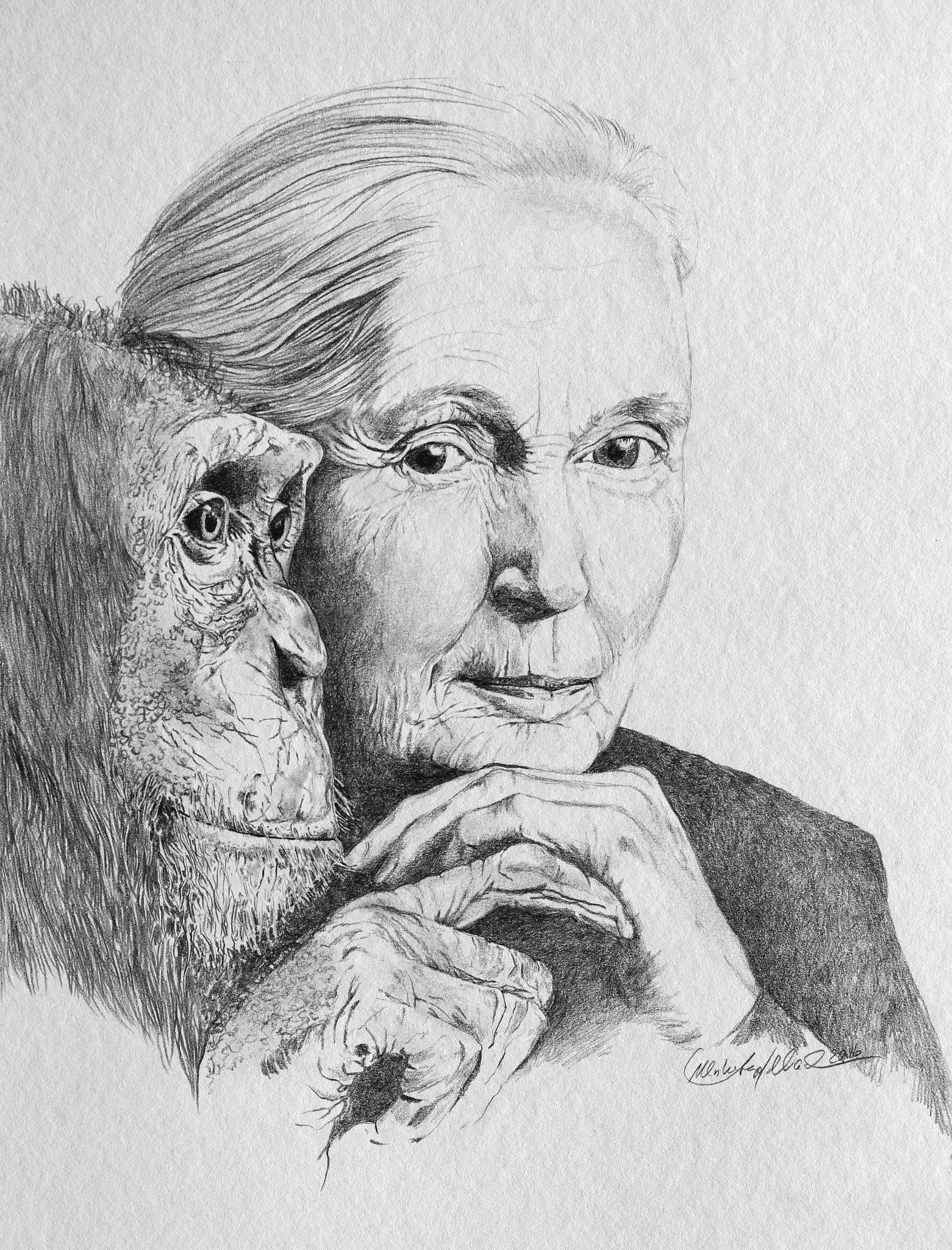 Jane Goodall Bleistift