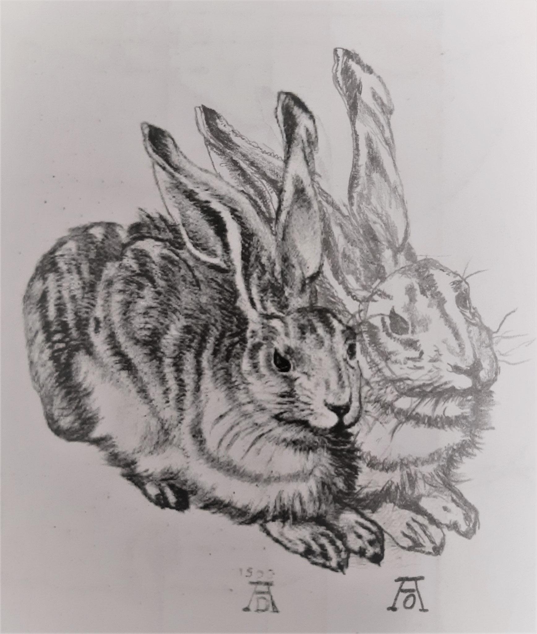 Andrea Orthen / Verdoppelung nach Dürer