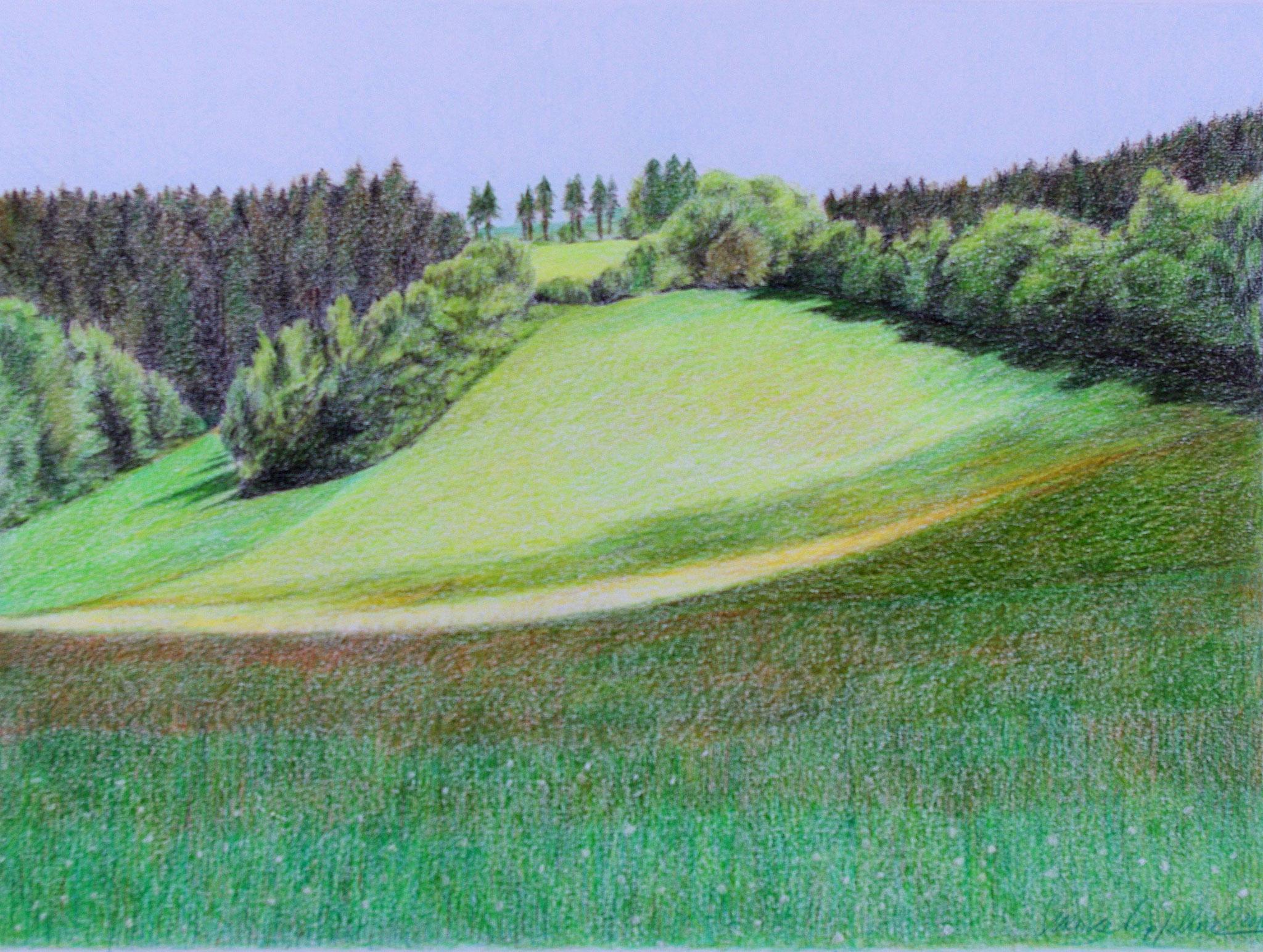 Landschaft / Farbstift / 40 x 50 cm