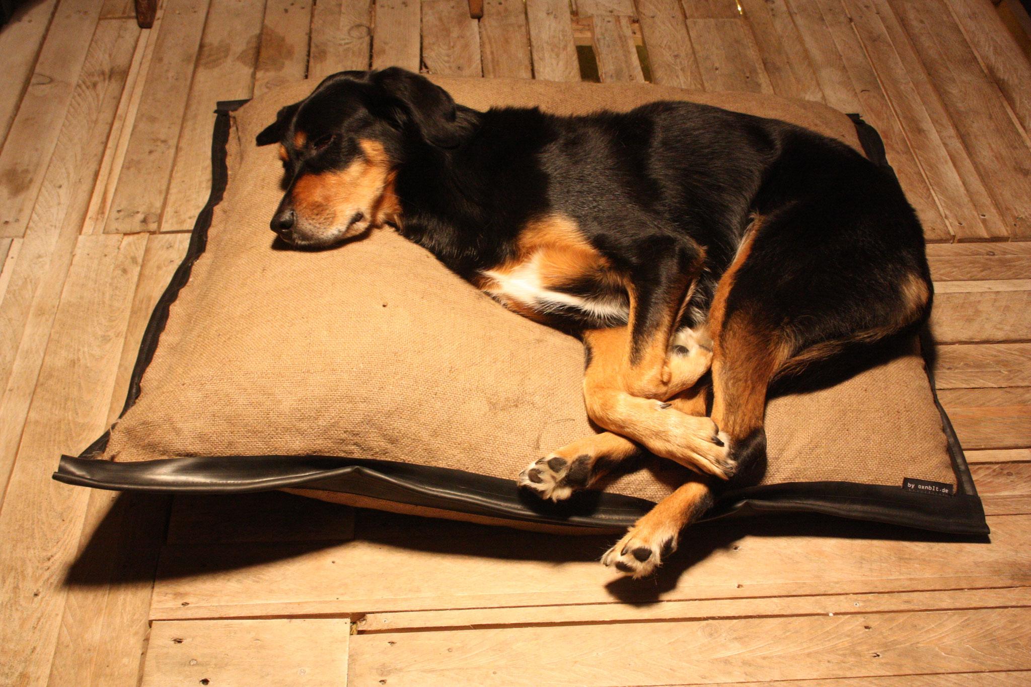 Upcycling: Hundekissen aus Jutesäcken und Fahrradschlauch