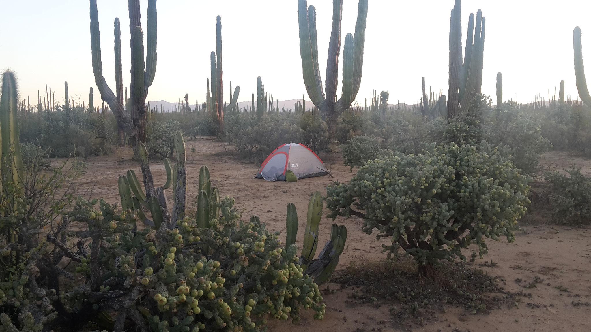 Zelten in Mexiko