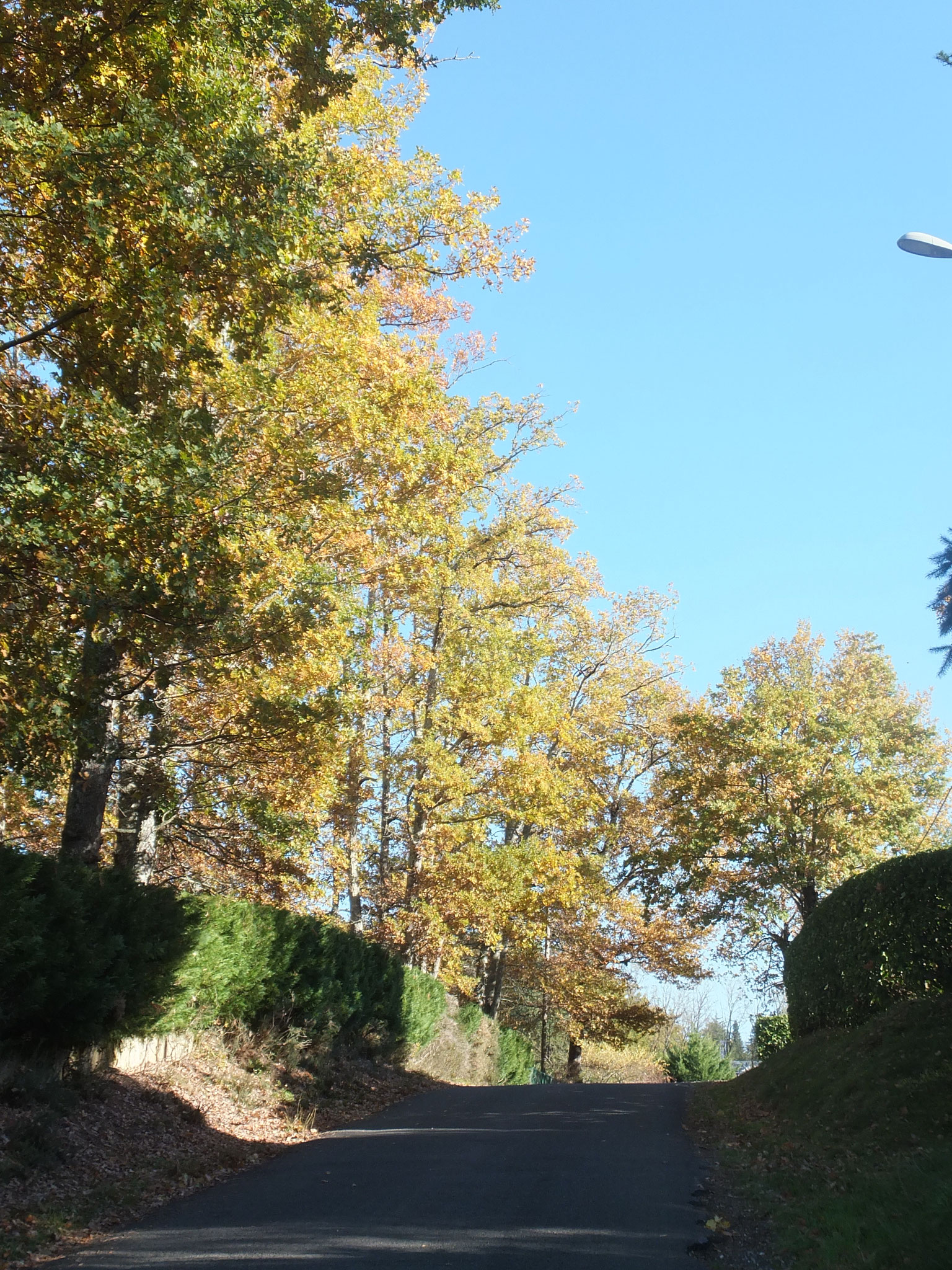 Notre rue, Chemin du Cap des Bories