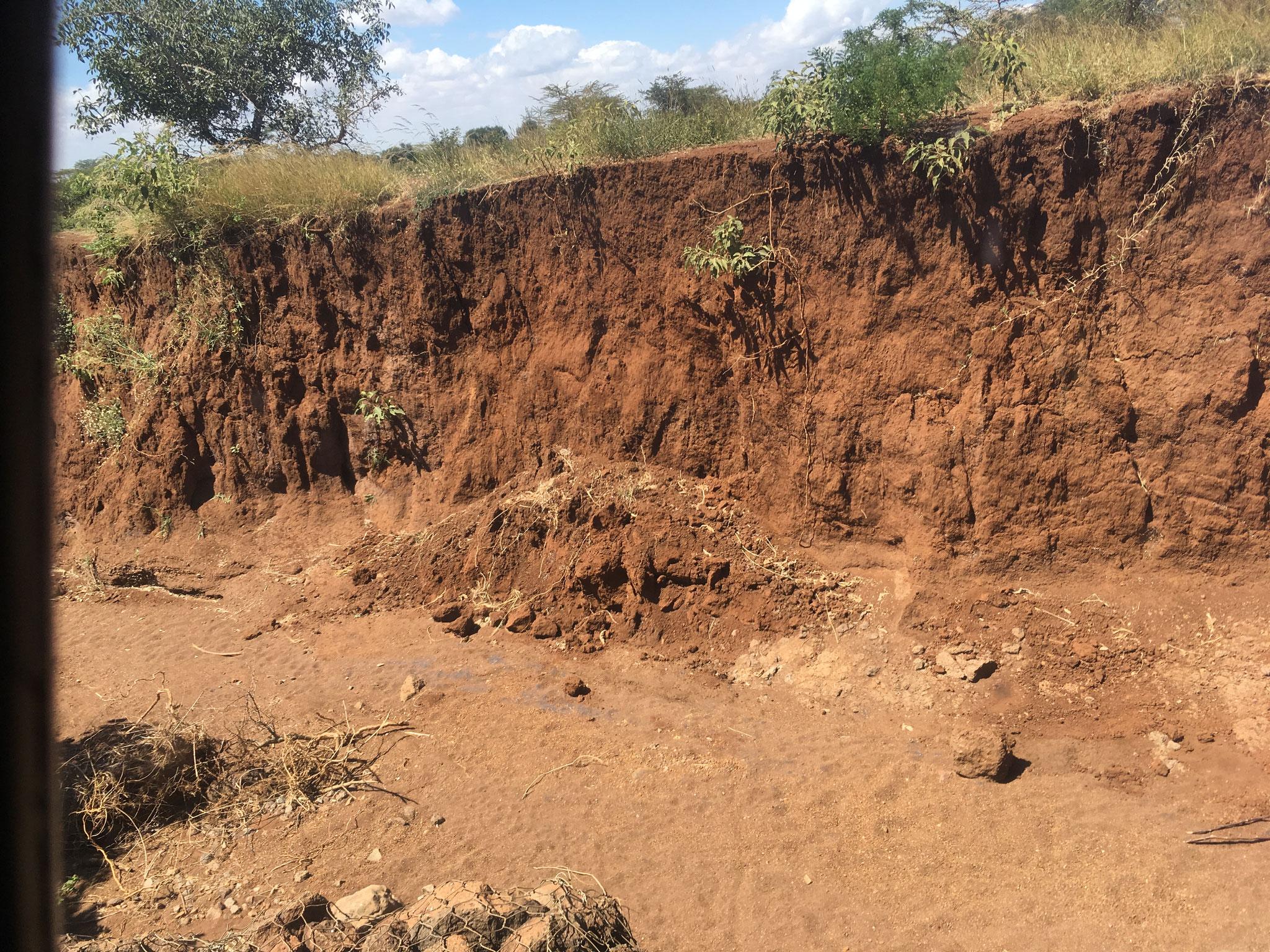 Schäden durch sehr starken Niederschlag