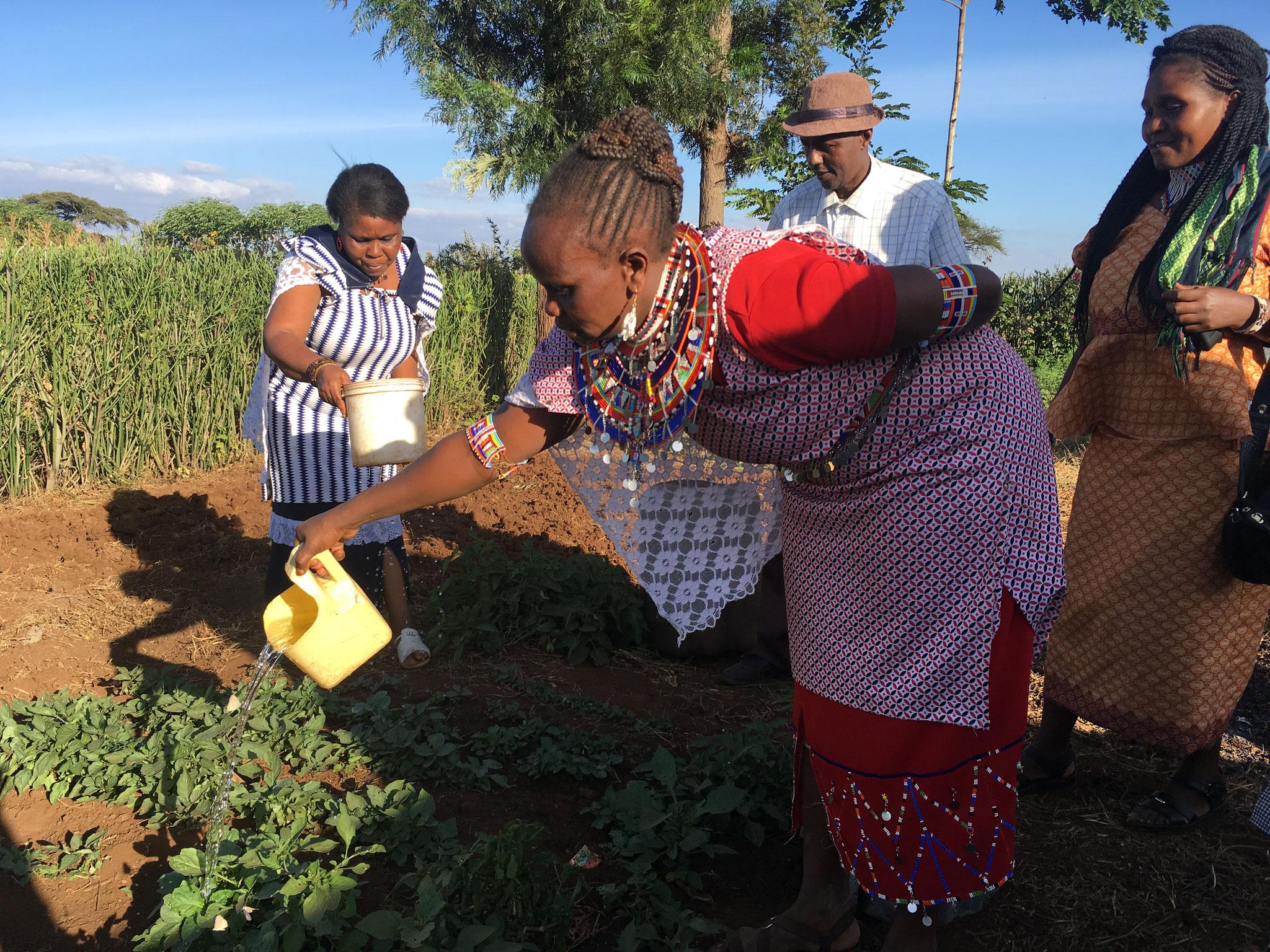Gemüsegärten bei einem Mitglied der Enduet Frauengruppe