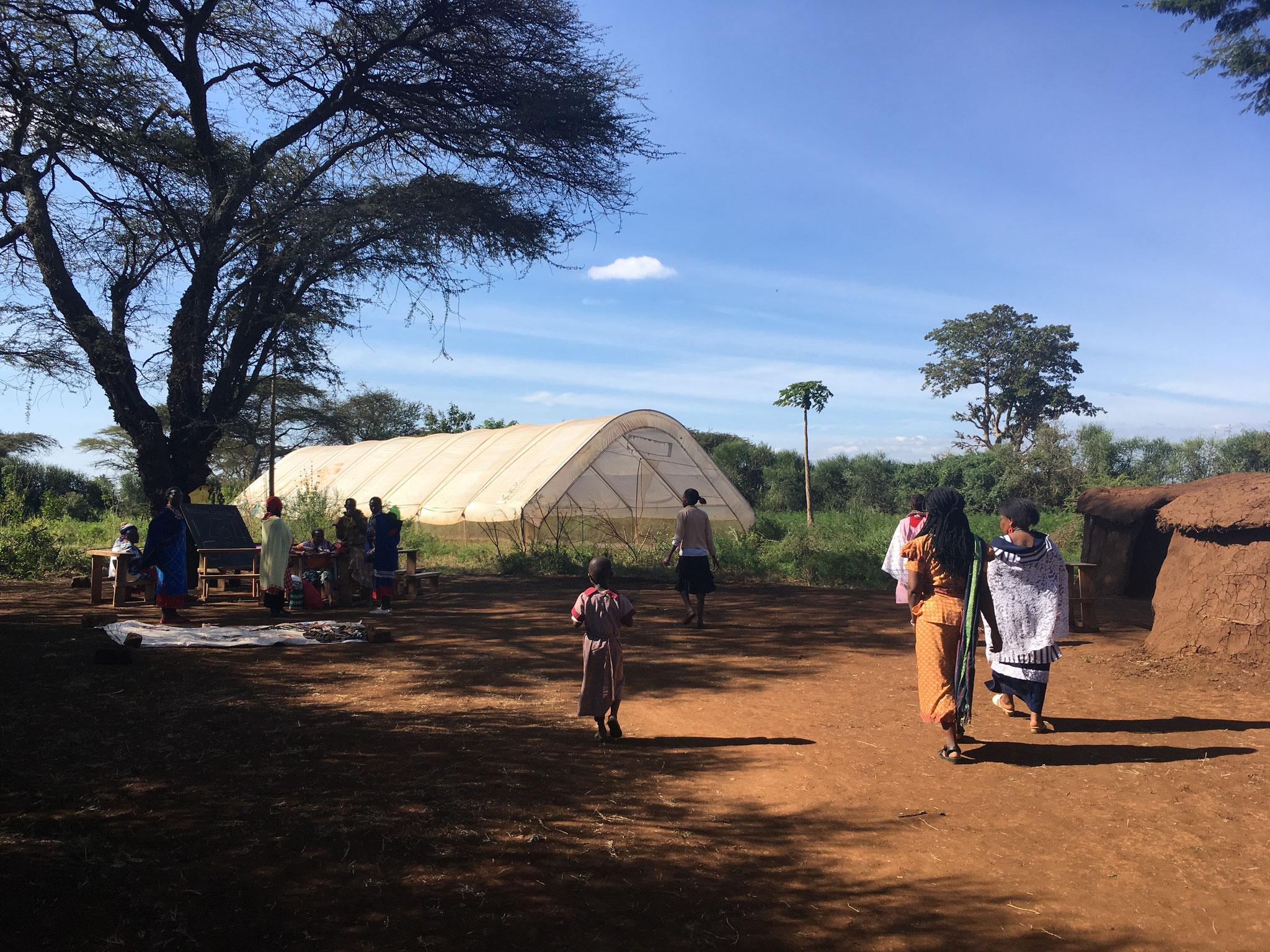Areal der Enduet Frauengruppe mit Gewächshaus