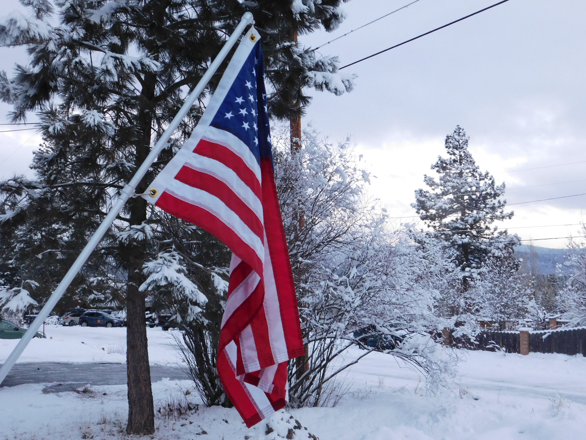 American flag with snow.