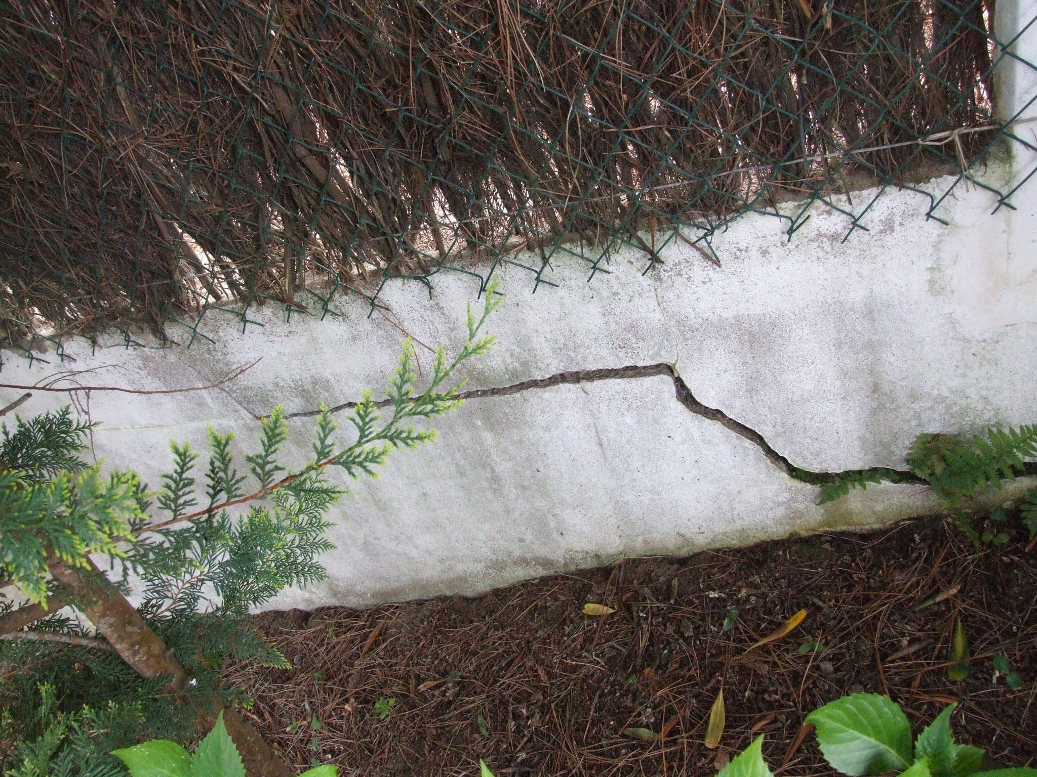 dislocation d'un muret de soubassement lié à la structure générale