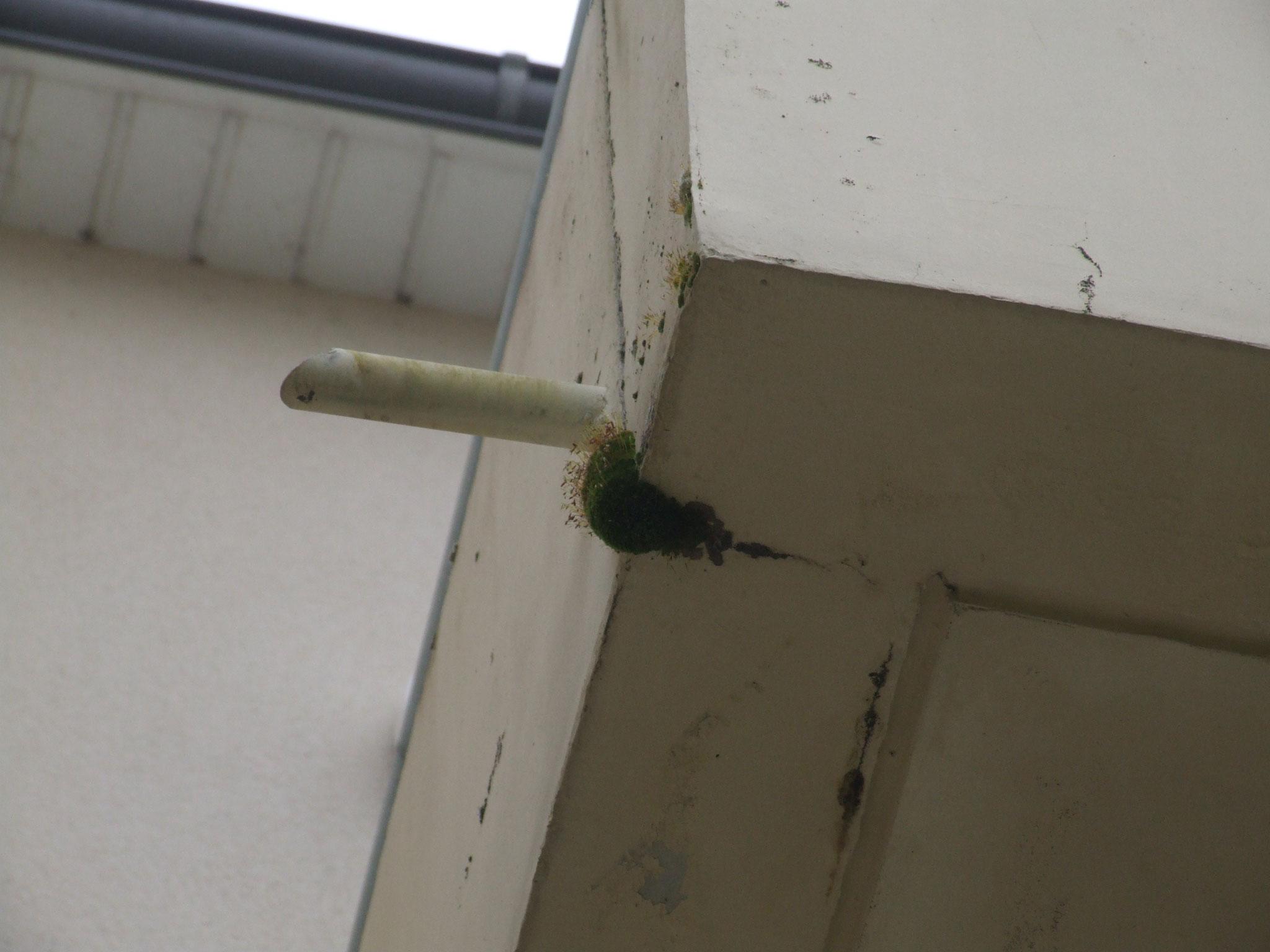 Balcon en béton : dégradation du béton, des aciers (3)