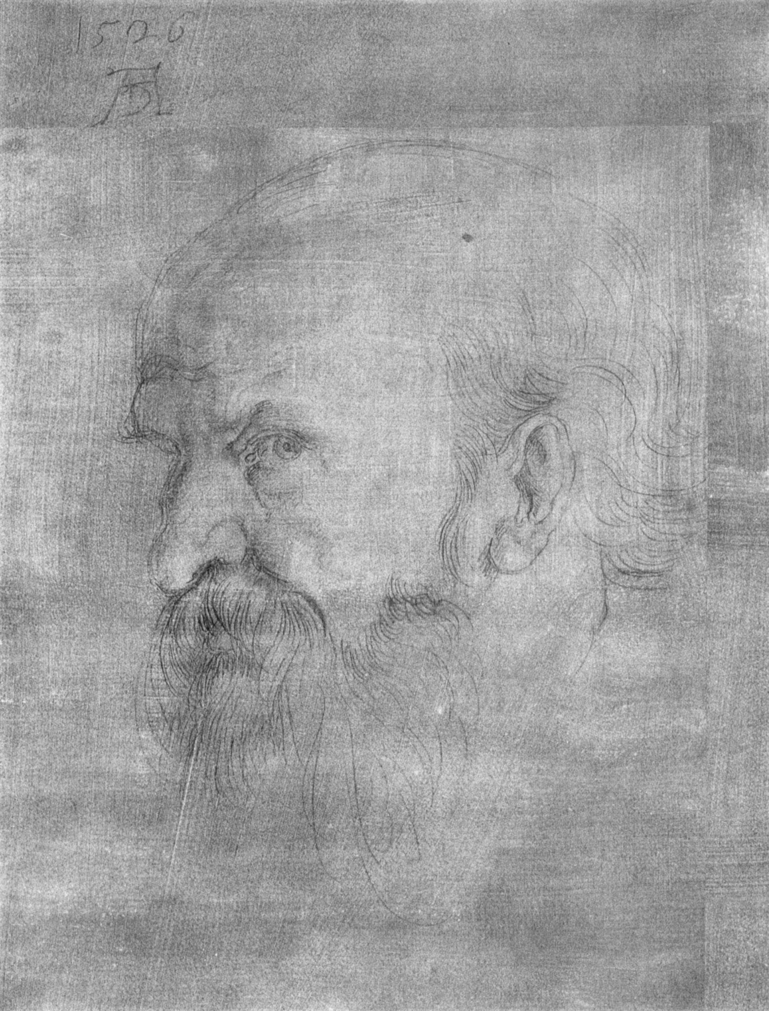 """Studie zu den """"Vier Aposteln"""": Kopf des Paulus"""