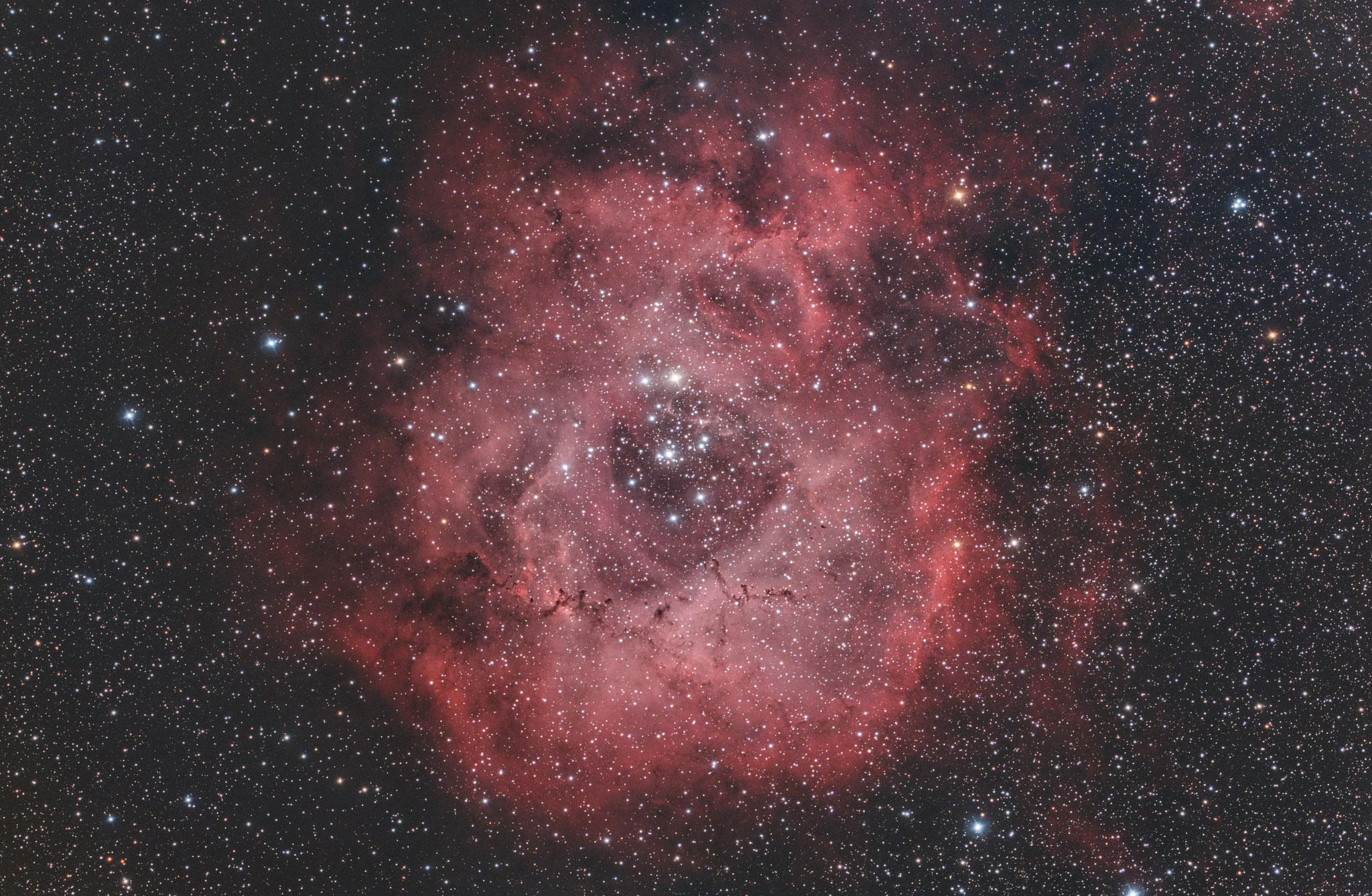 """NGC 2237, EdgeHD11"""" mit Hyperstar, Alccd10, IDAS-LPS-P2 Filter, 69x300s"""