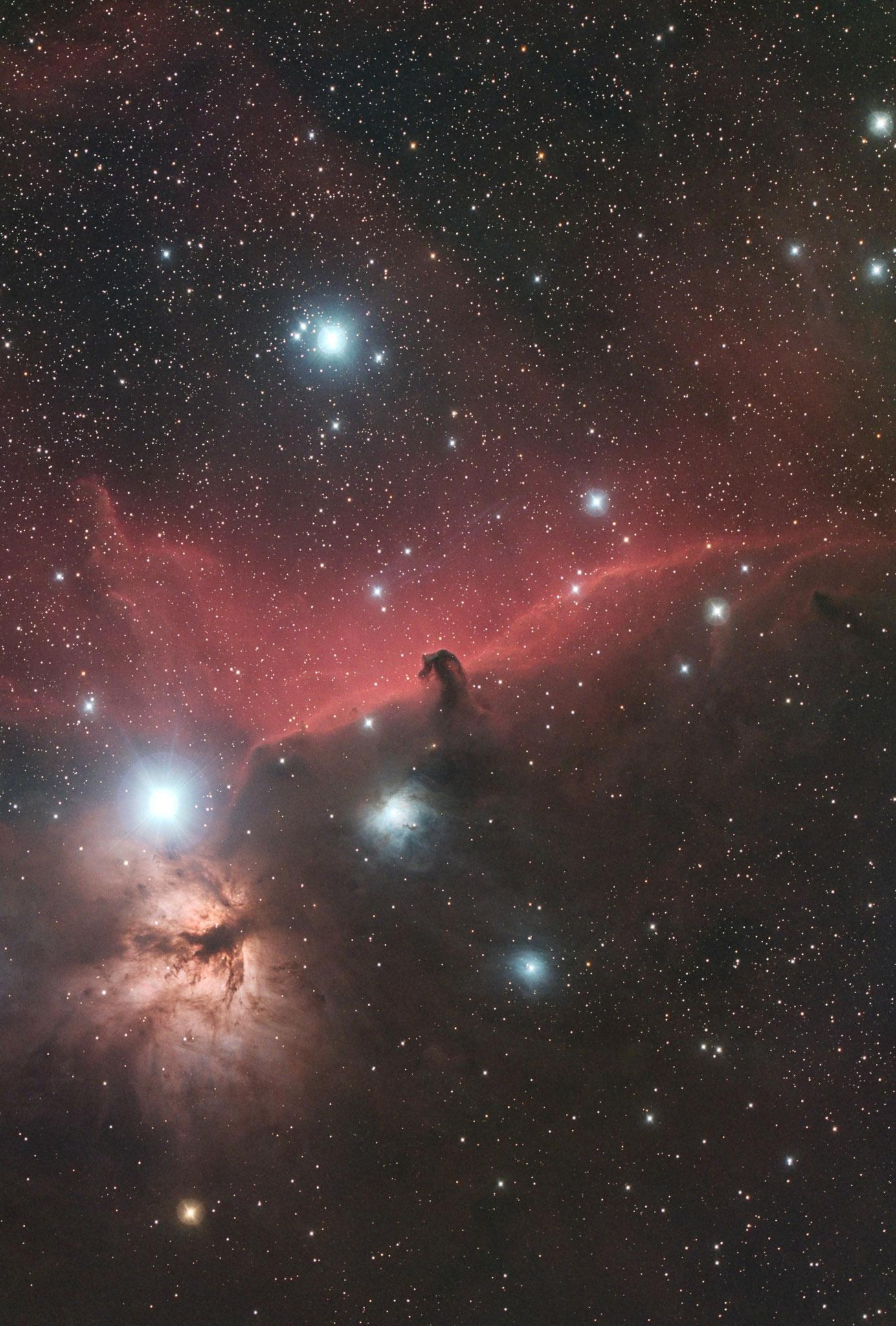 """IC 434, EdgeHD11"""" mit Hyperstar, Alccd10, IDAS-LPS-P2 Filter, 50x300s"""