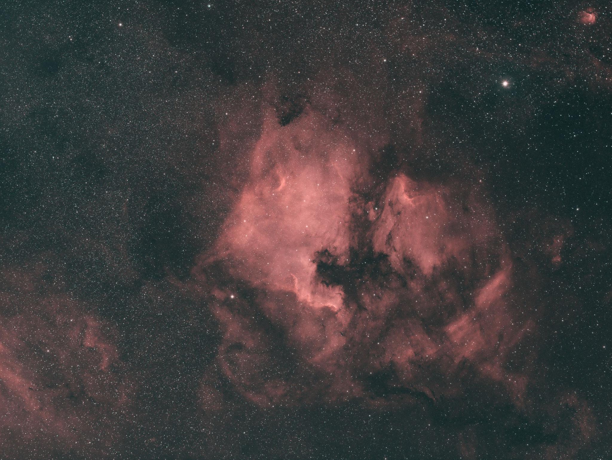 NGC 7000; Samyang 135mm; Ha (7nm) 25x180s, OIII (8,5nm) 16x180s, Pseudo LRGB mit Ha als Luminaz, R:Ha, G:OIII, B:OIII