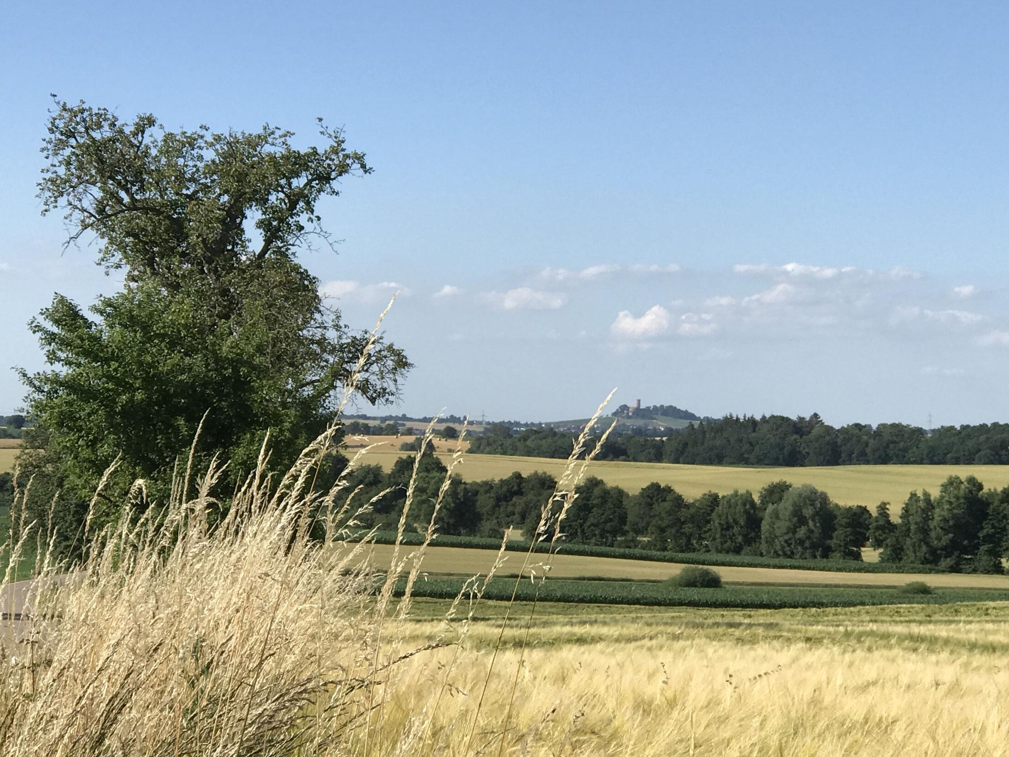 Burg Steinsberg bei Sinsheim