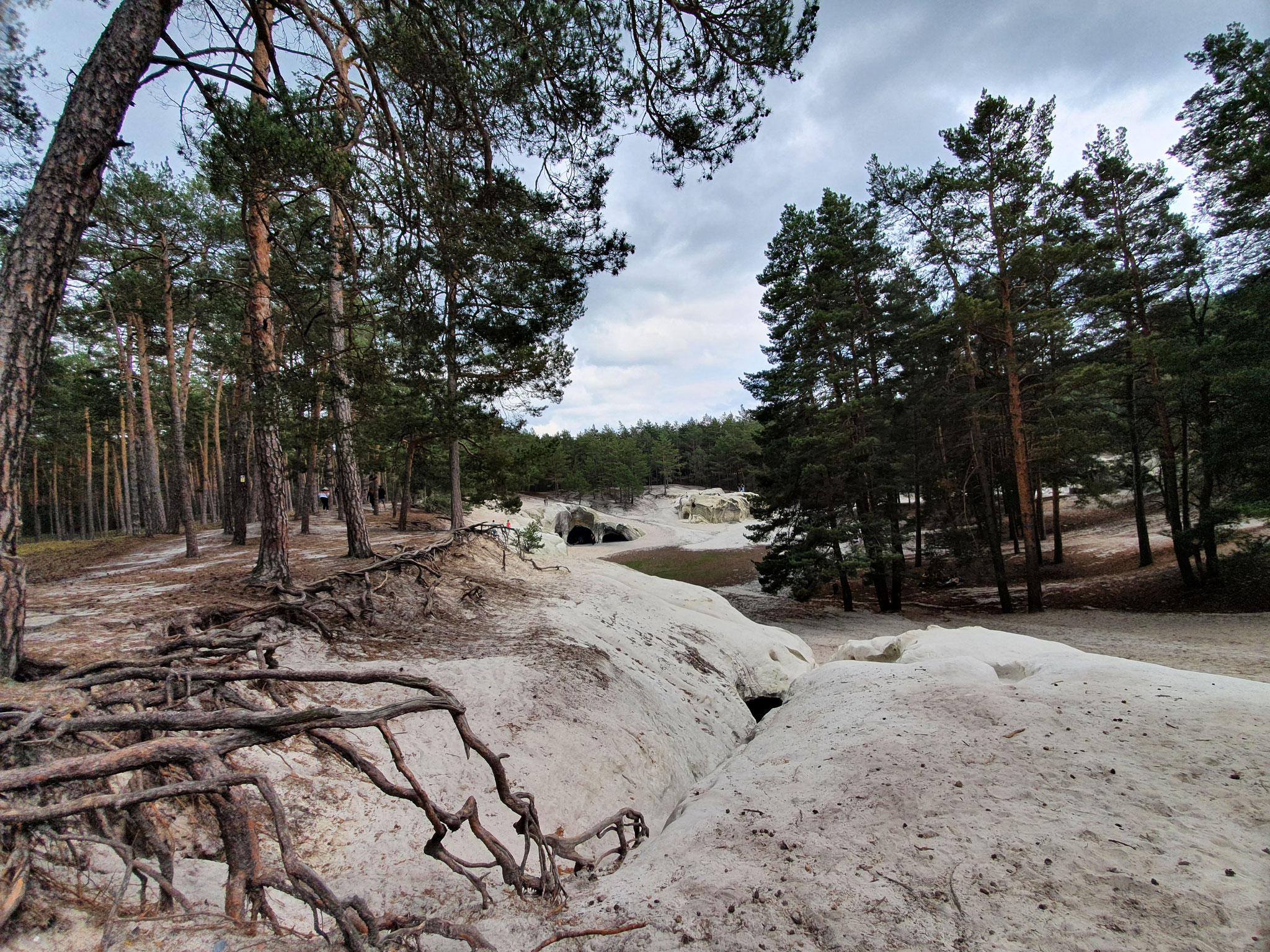 Sandhöhlen Blankenburg