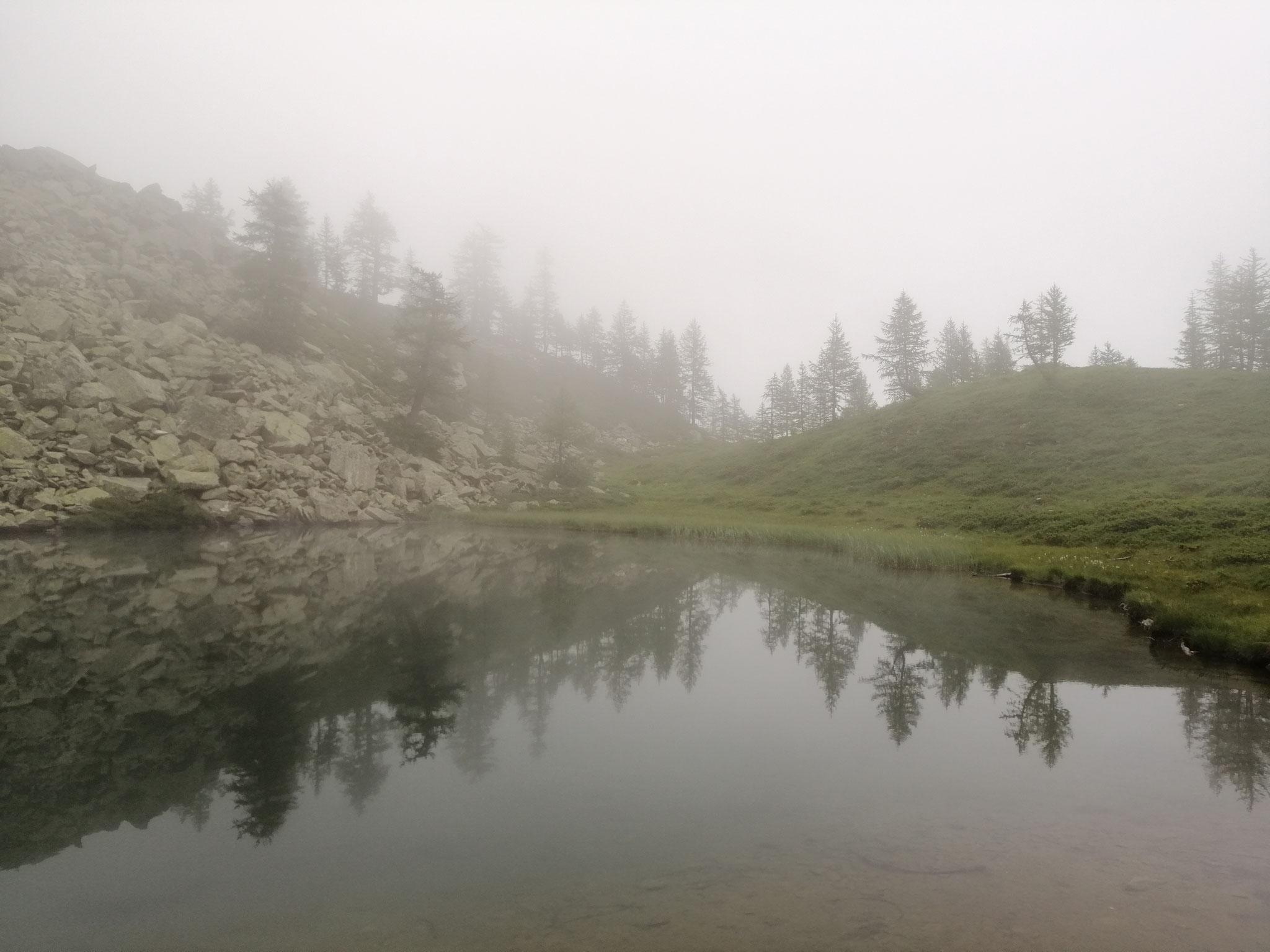 Wairasee im Nebel