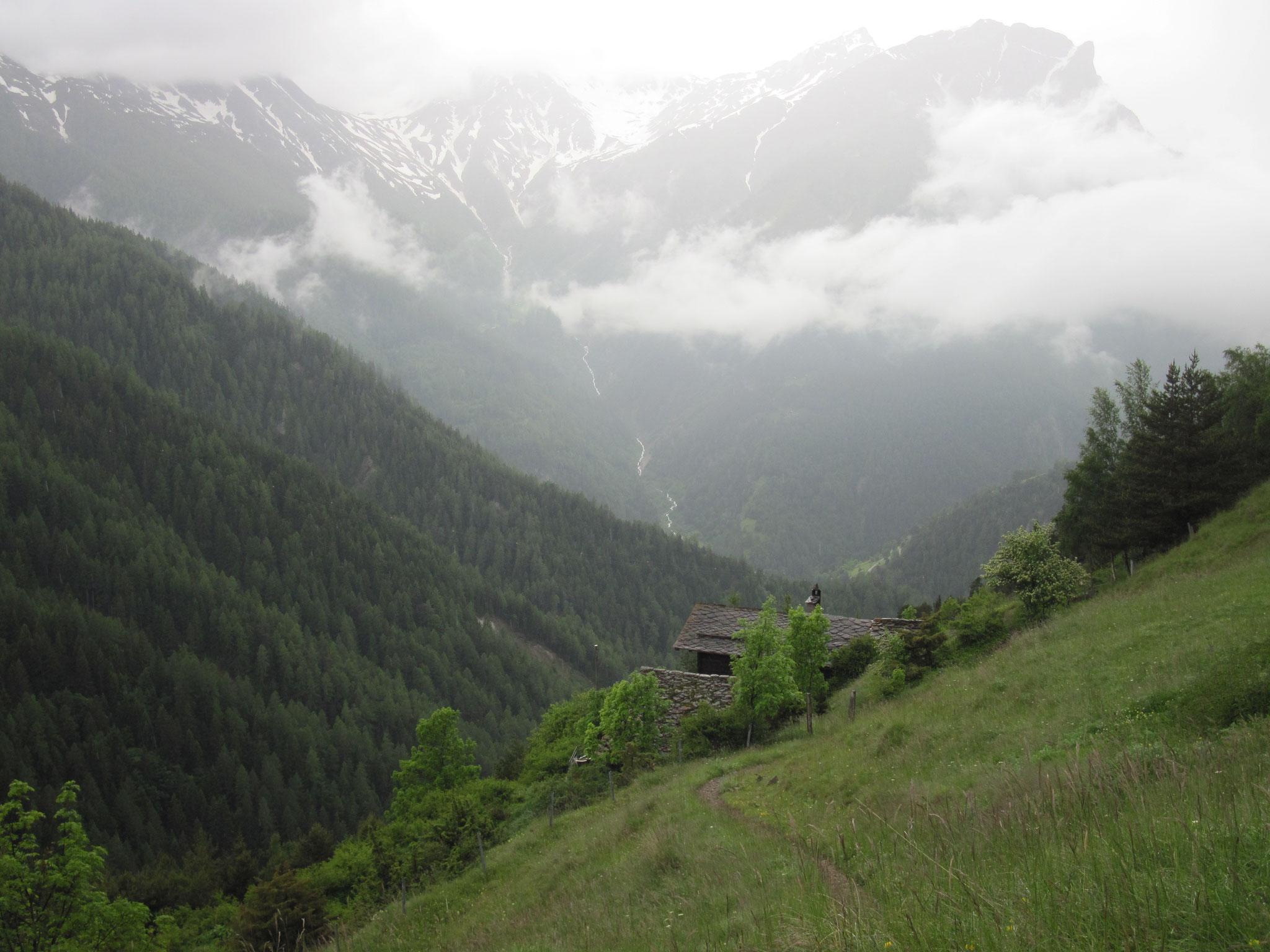 Ausblick überes Gantertal