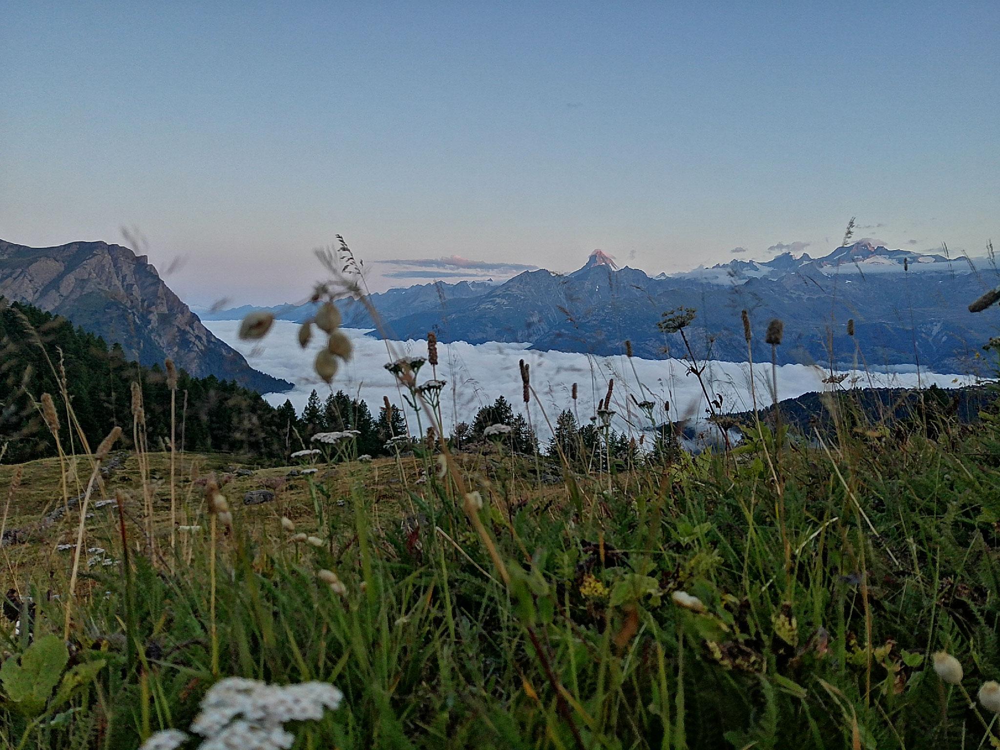 Nebelmeer über dem Rhonetal